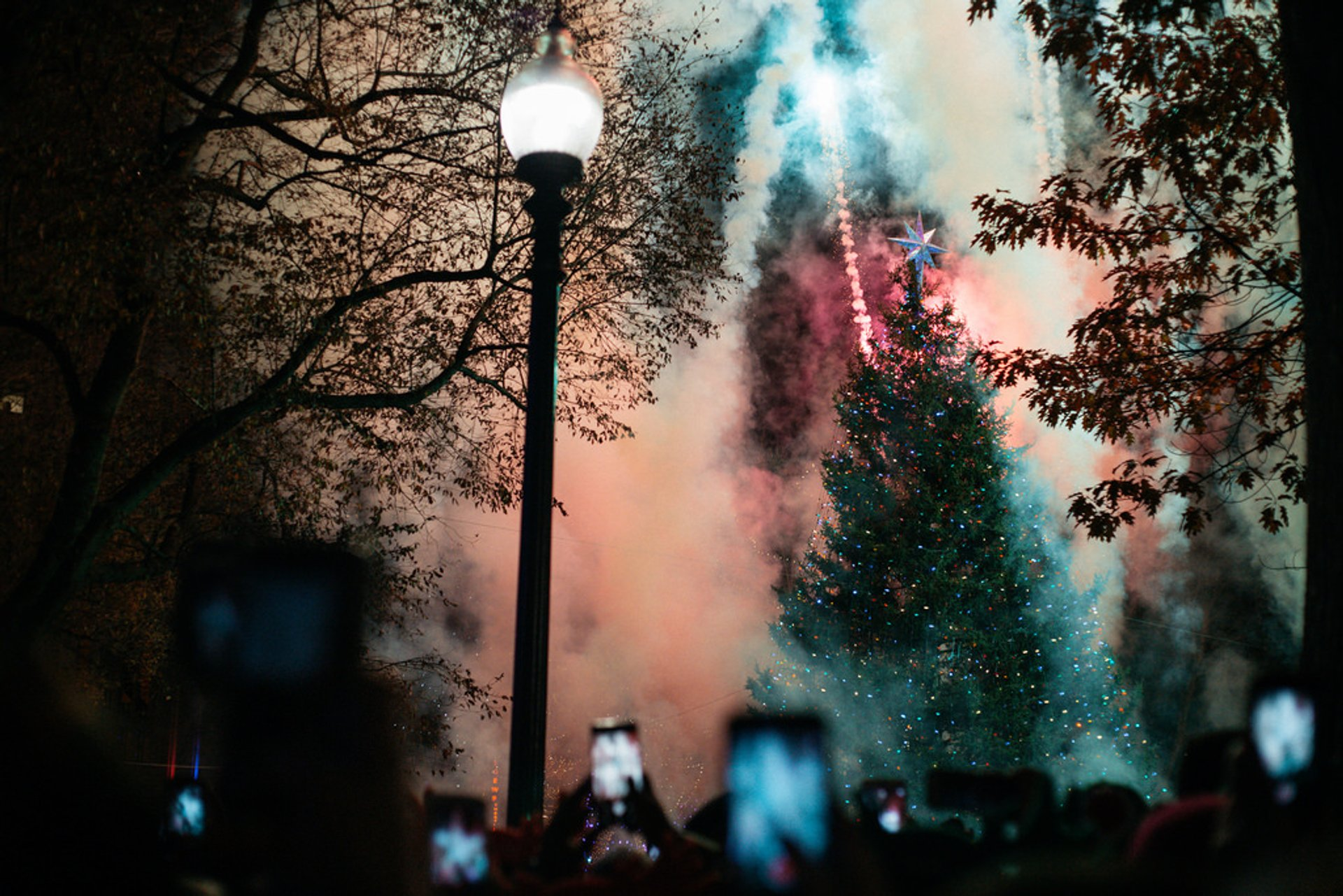 Boston Common Tree Lighting 2019