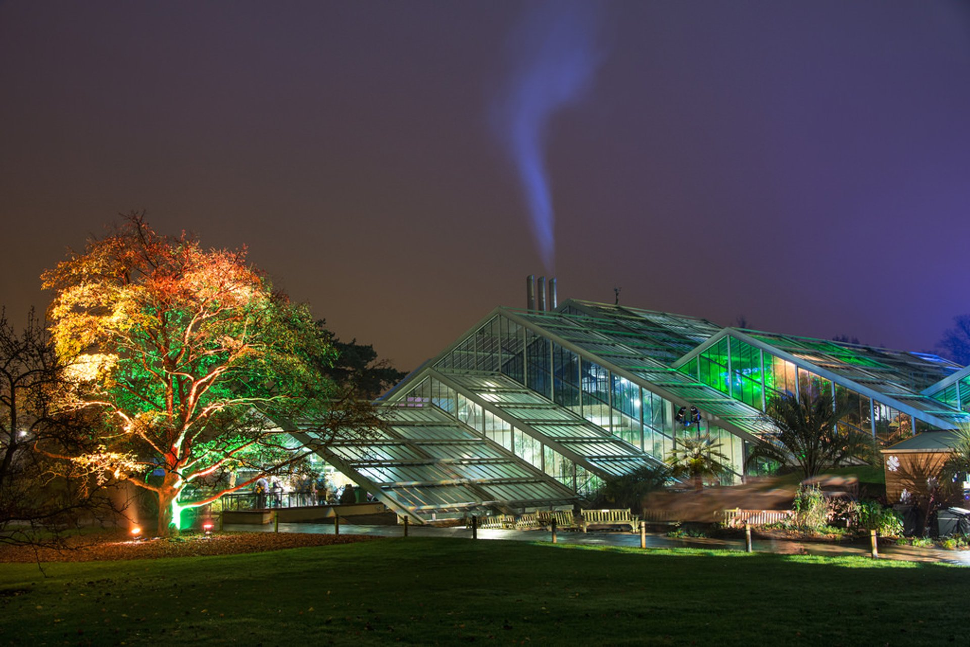 Illuminated trail across Kew Gardens 2020