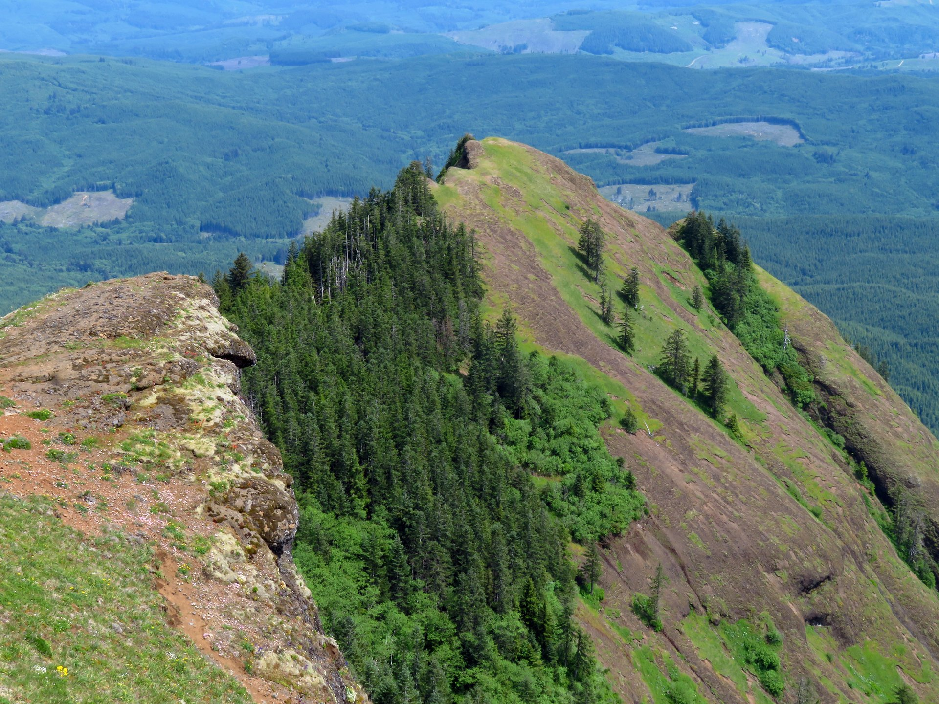 Best time to see Saddle Mountain in Oregon 2020
