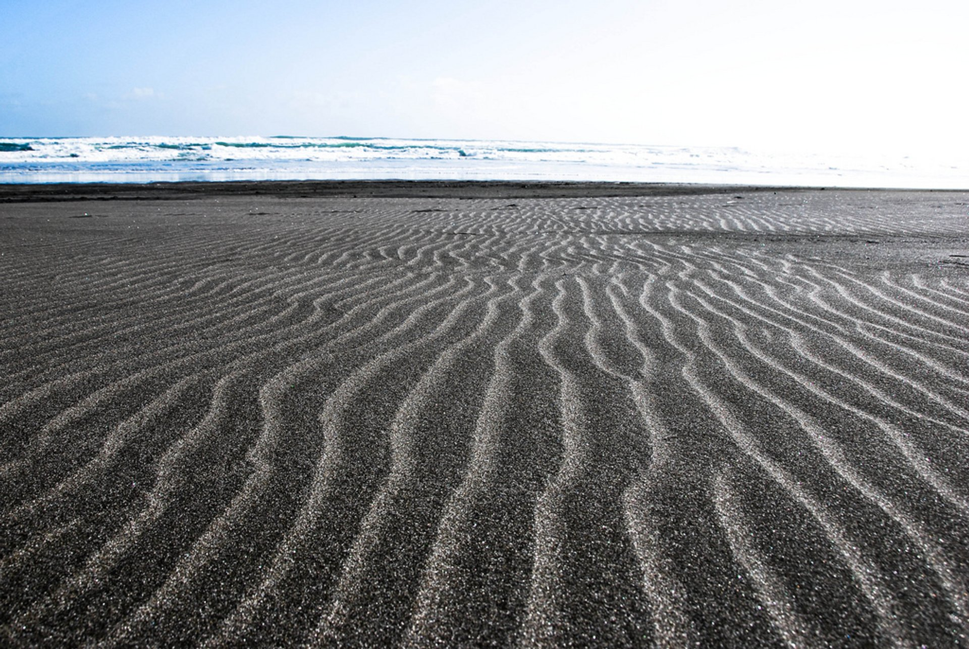 Black Sand Piha Beach in New Zealand - Best Time
