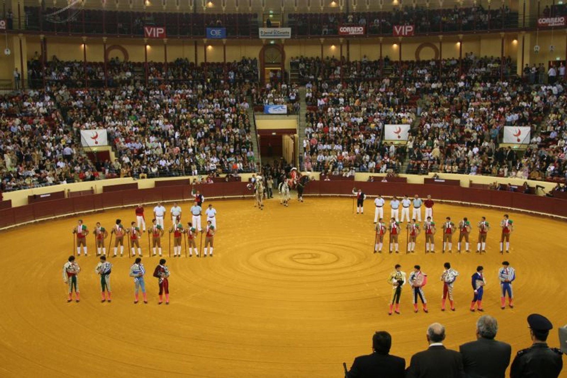 Best time for Lisbon Bullfighting in Portugal 2020