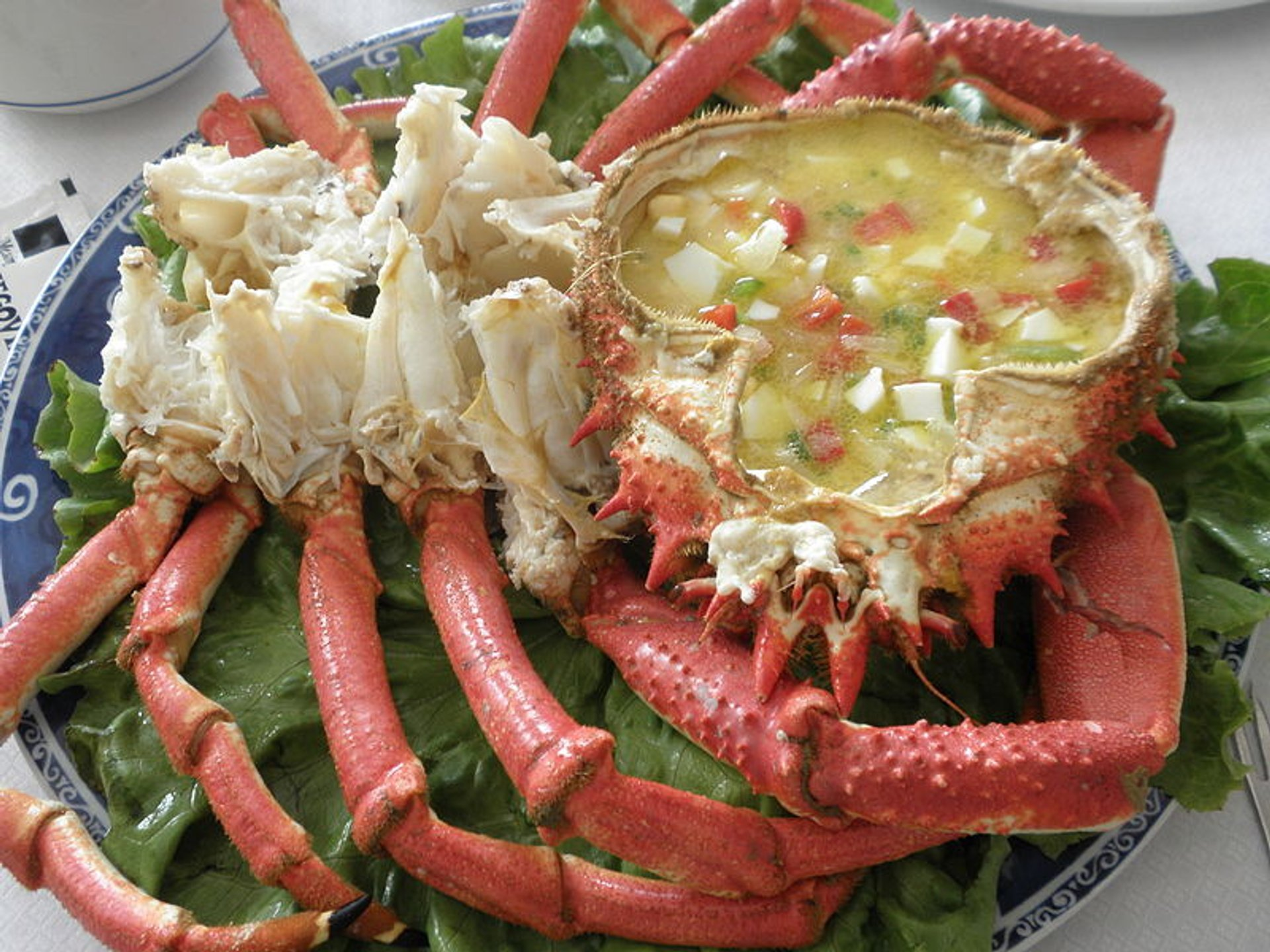 Best time for Centolla or King Crab in Chile 2019