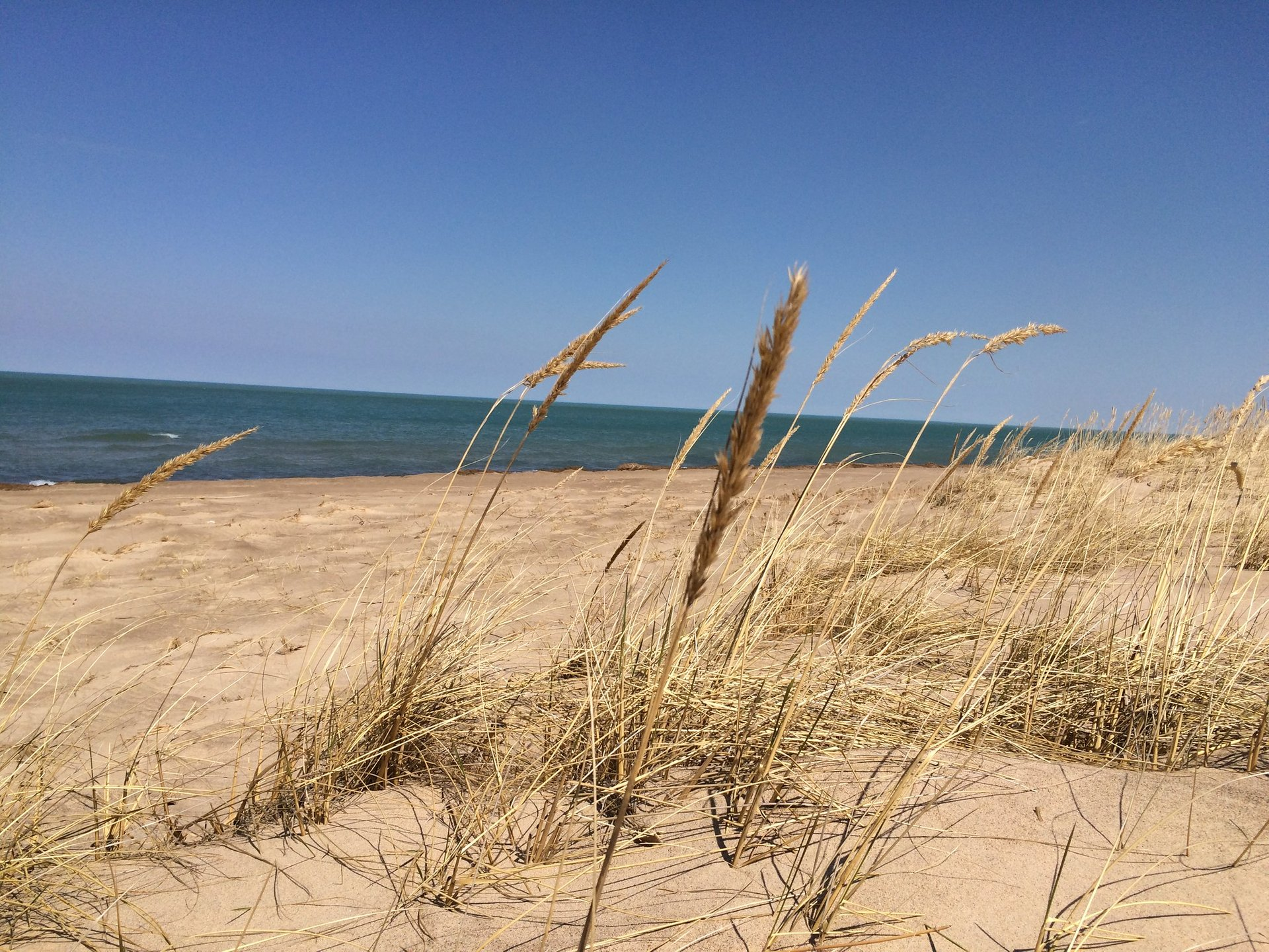 Indiana Dunes National Park in Indiana - Best Season 2020