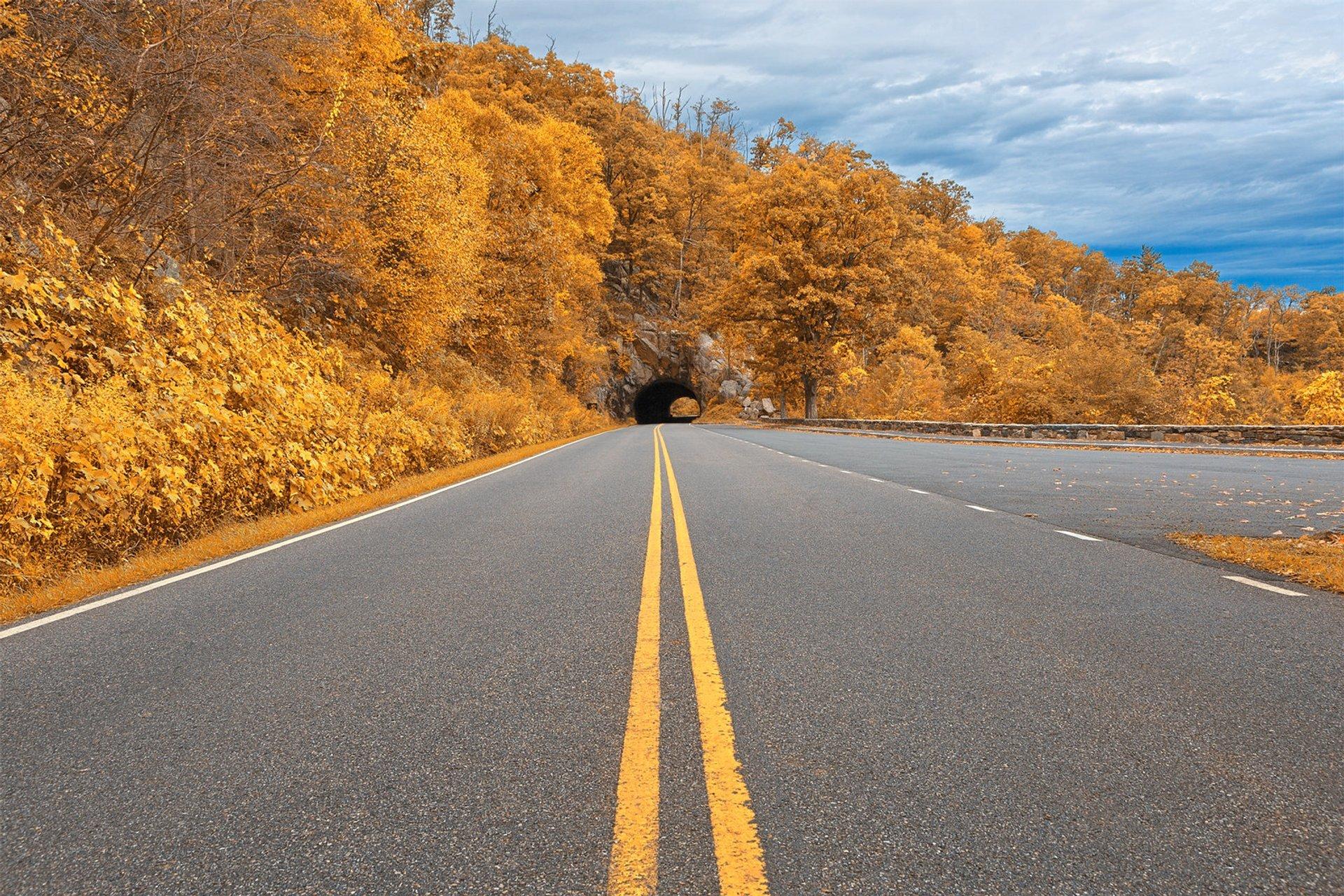 Shenandoah Skyline Drive 2020