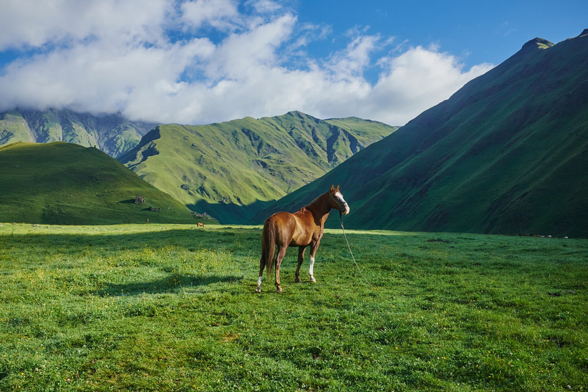 Best time for Exploring Tusheti in Georgia 2019