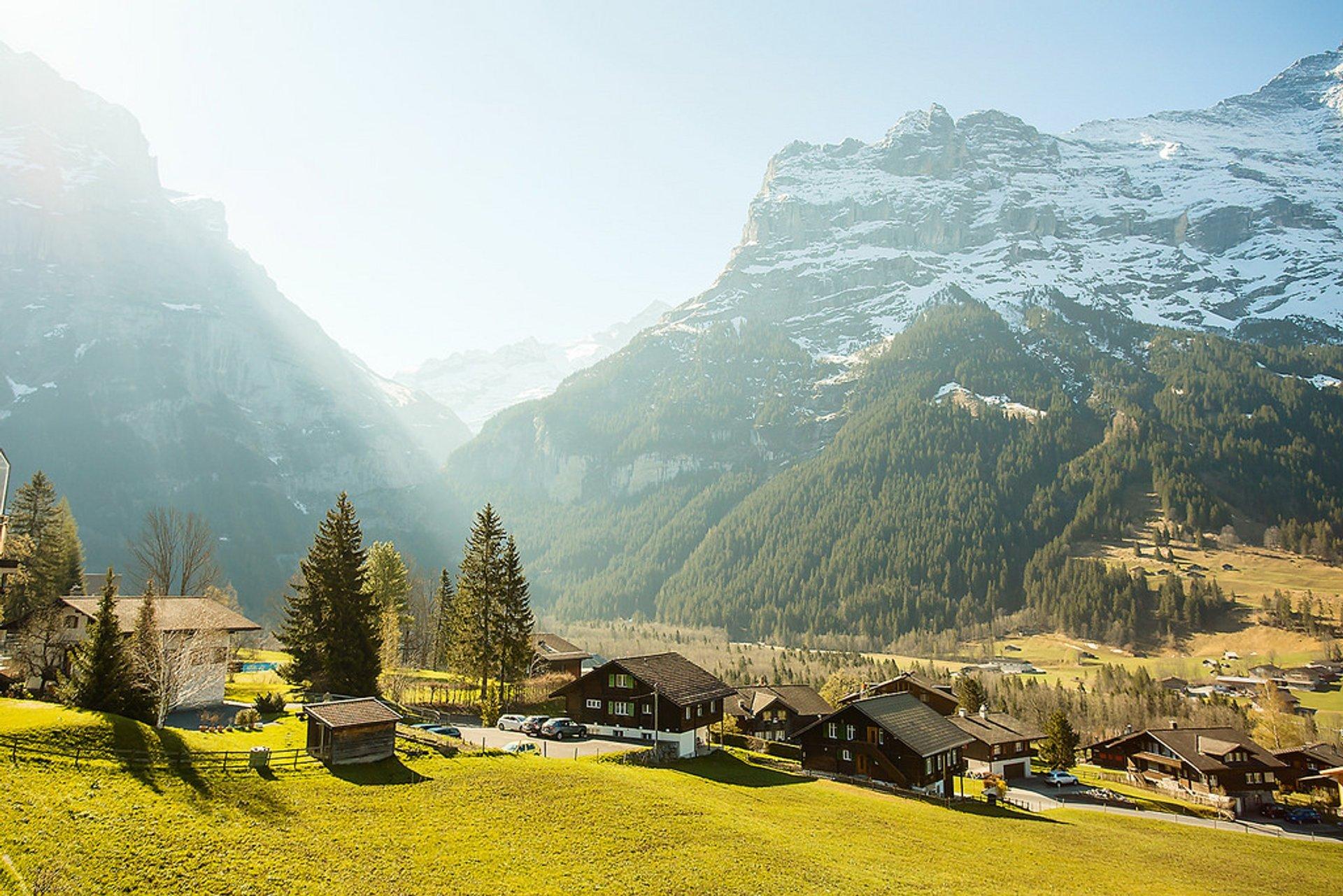 Spring in Switzerland - Best Season 2020