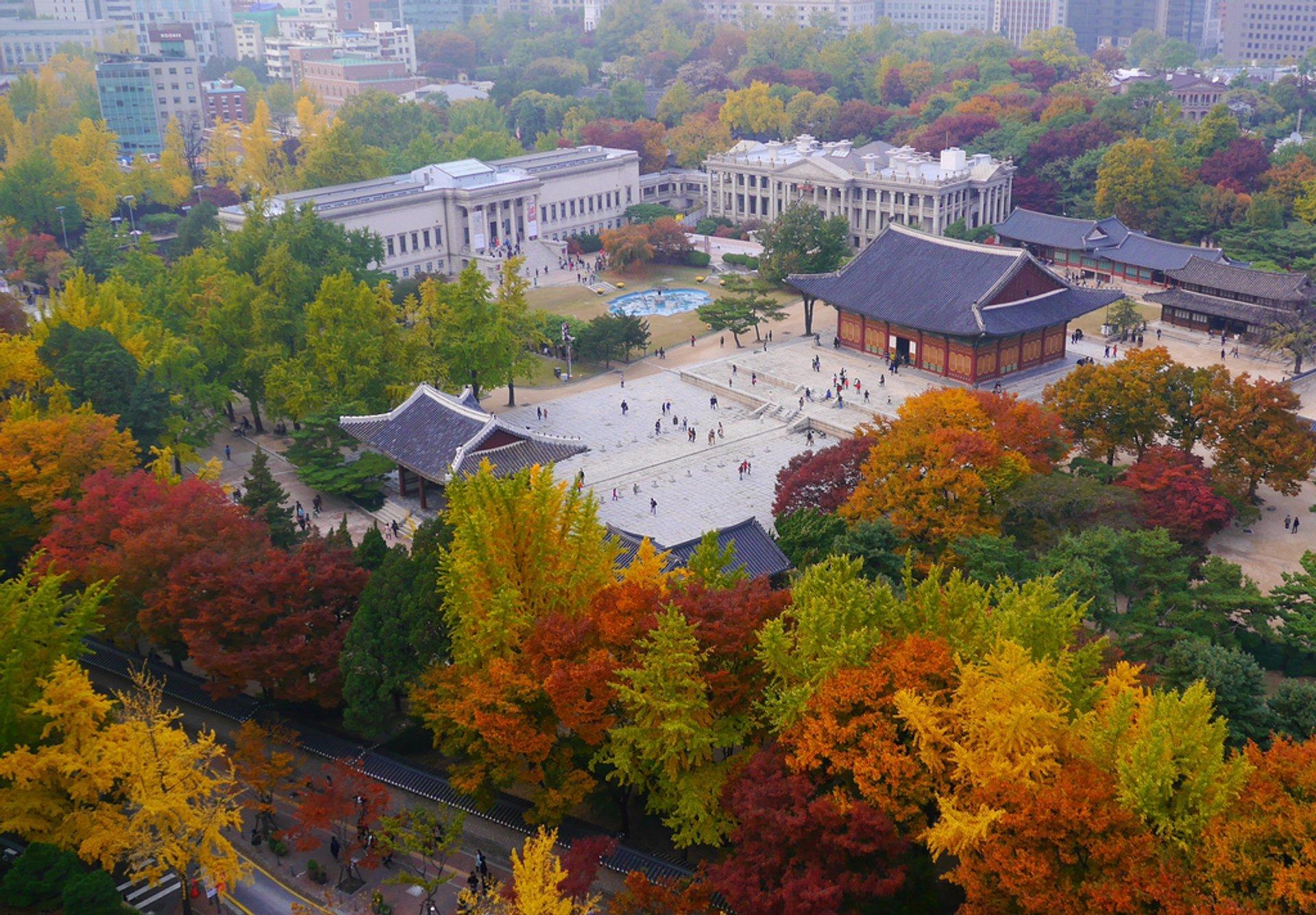 Autumn in Seoul 2020 - Best Time