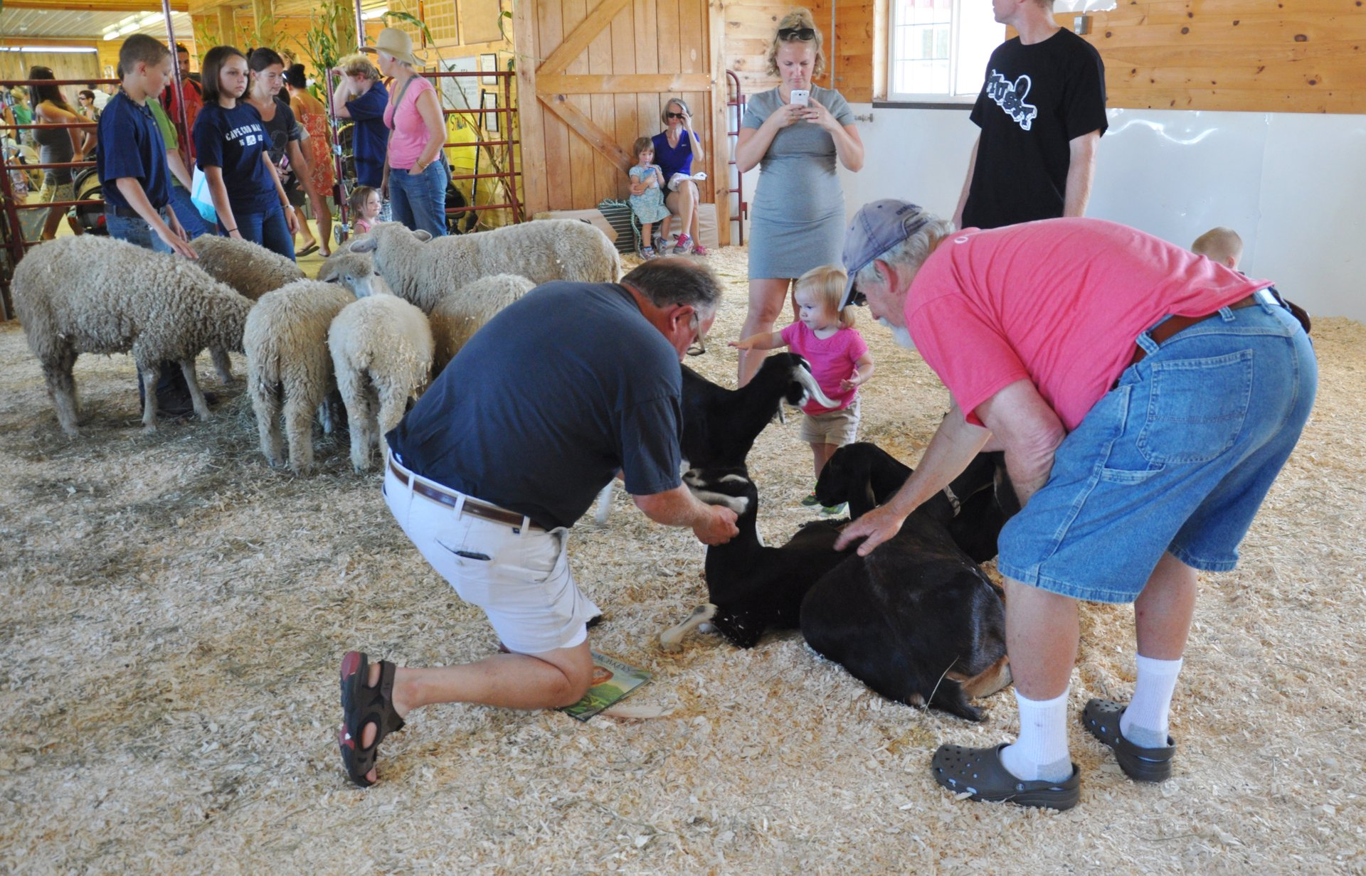 Goshen Fair in Connecticut - Best Season 2020