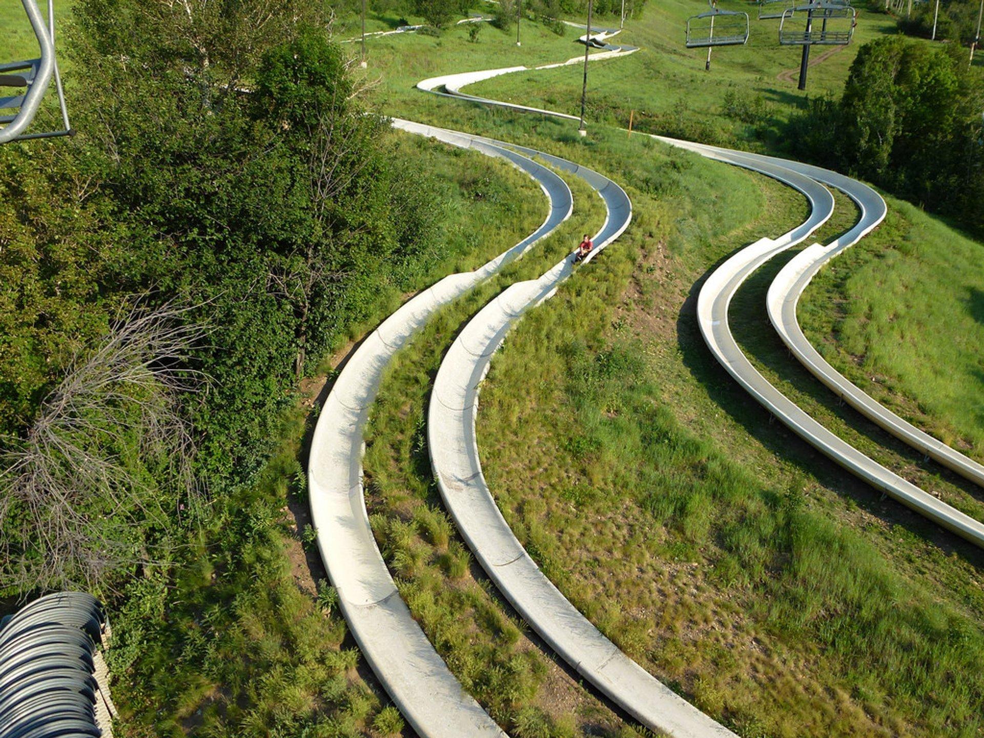 Alpine Slide 2020