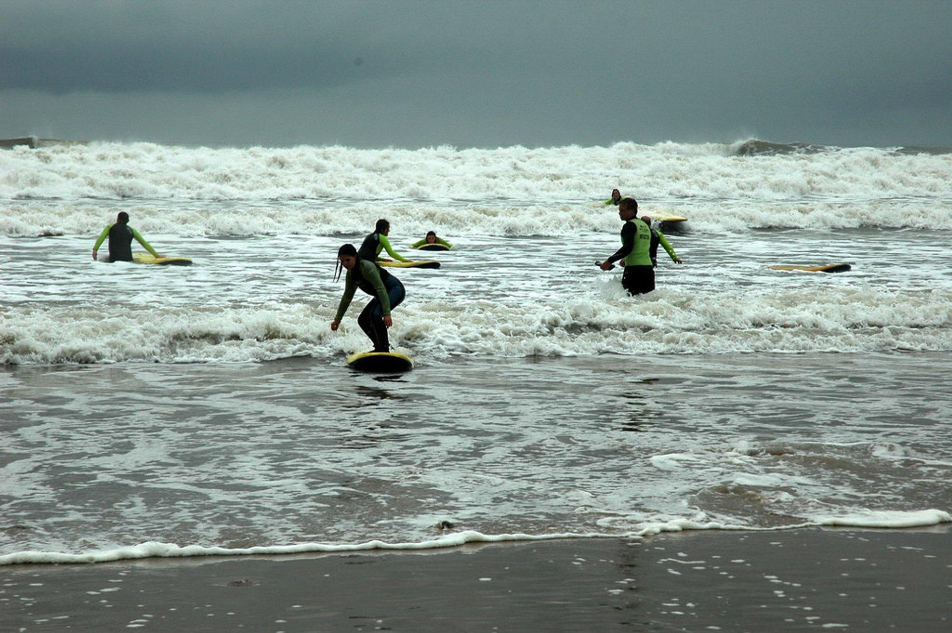 Llangennith surfers 2020