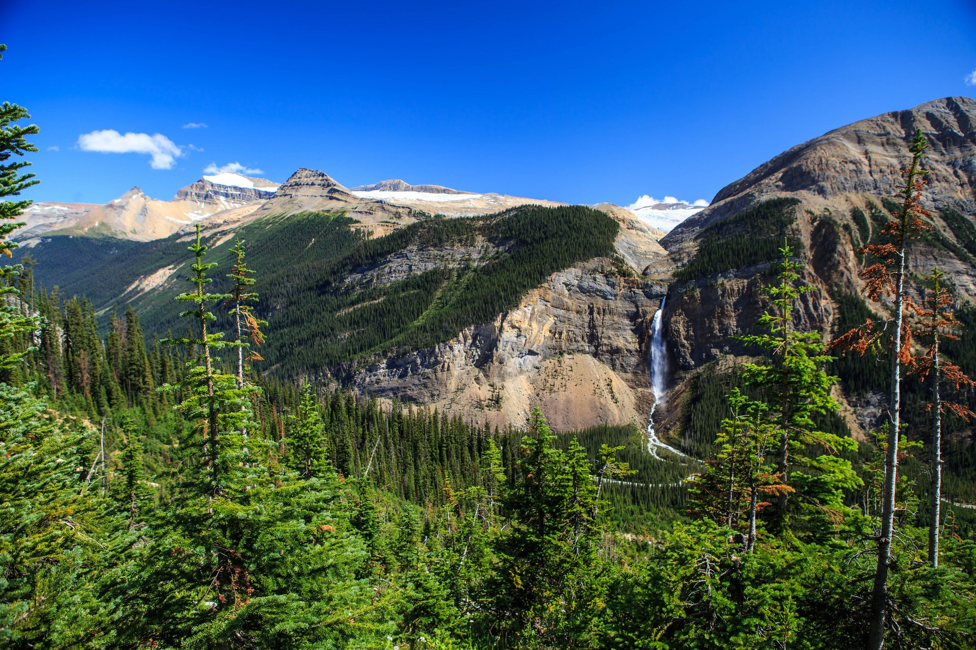 Takakkaw Falls from the Iceline Trail 2020