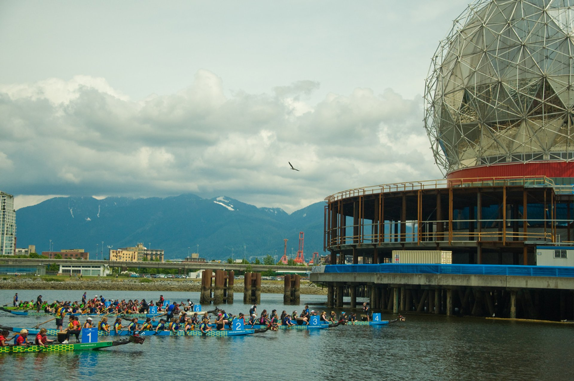 Best time to see Dragon Boat Festival in Vancouver 2020