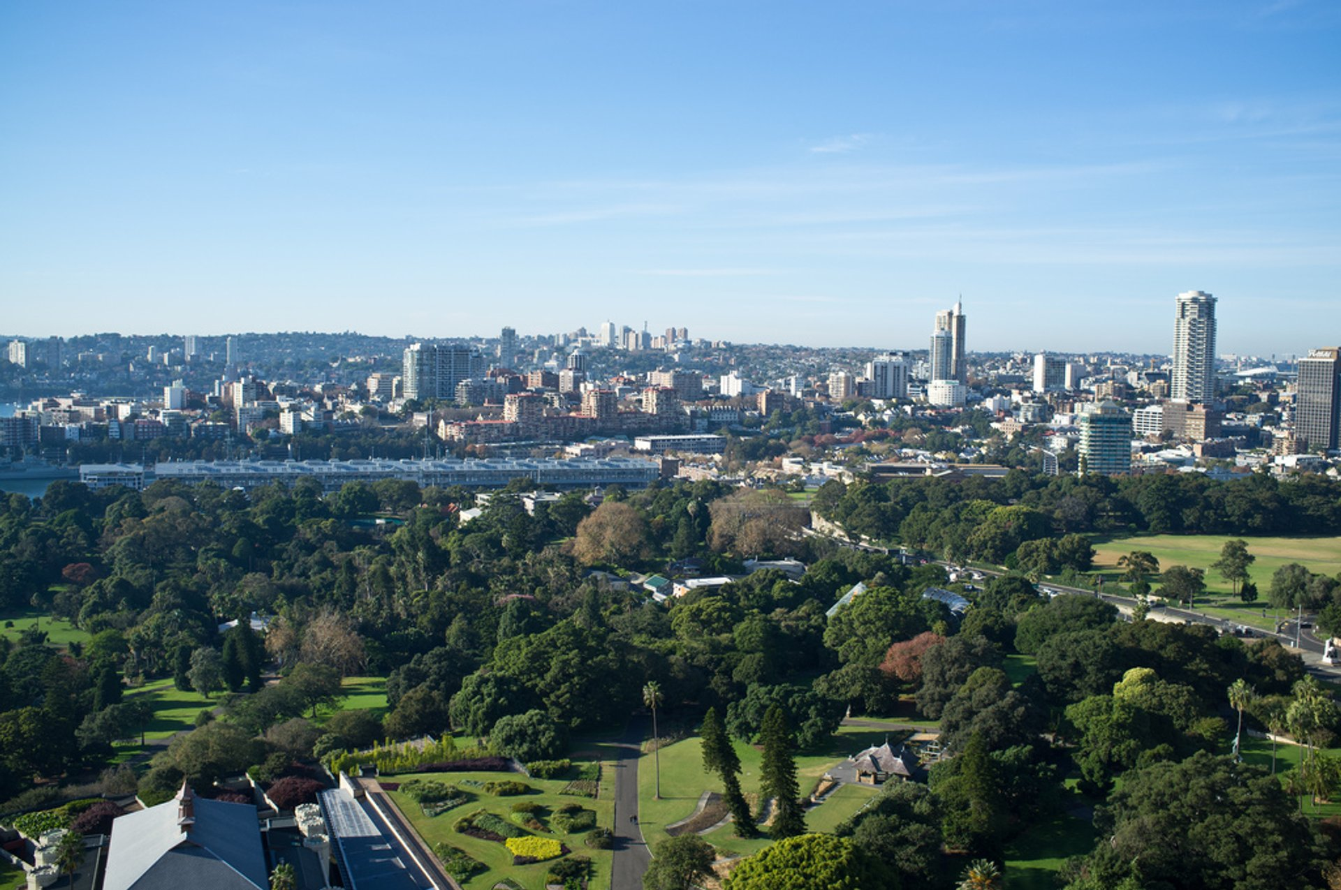 Looking out over the Royal Botanic Gardens 2020