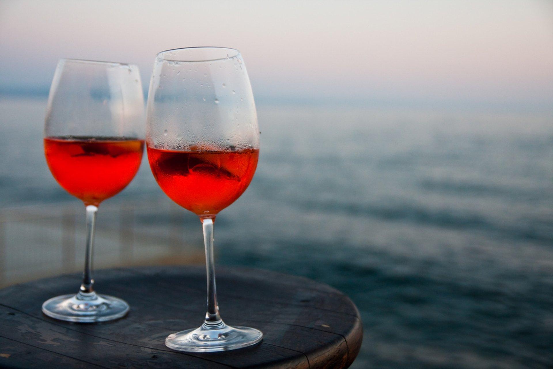 Wine Season in Slovenia 2020 - Best Time