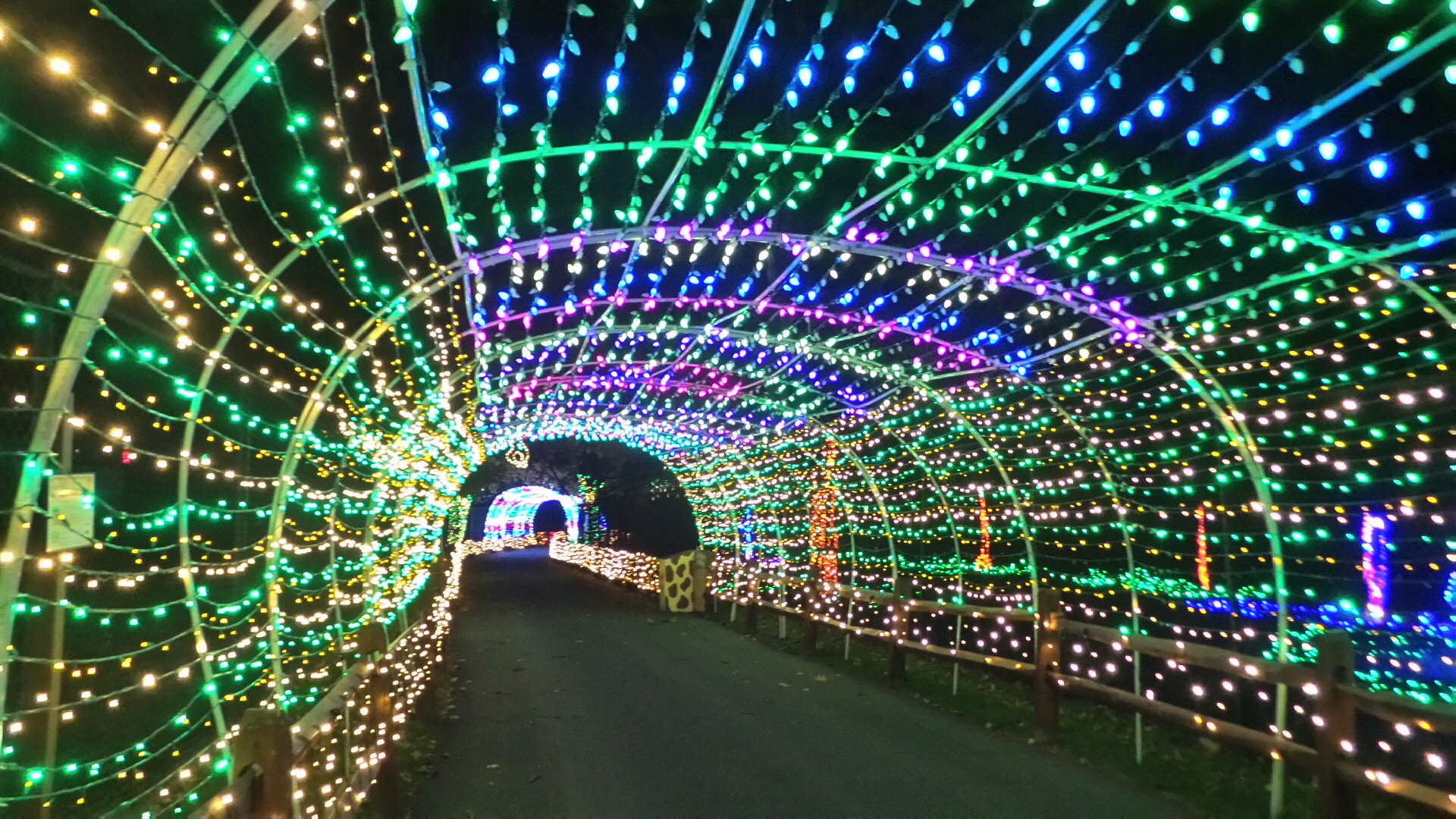 Lehigh Valley Zoo's Winter Lights Spectacular 2020