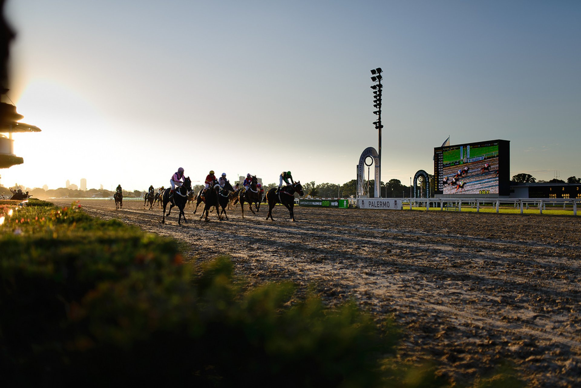 Best time for Horse Racing in Buenos Aires 2019