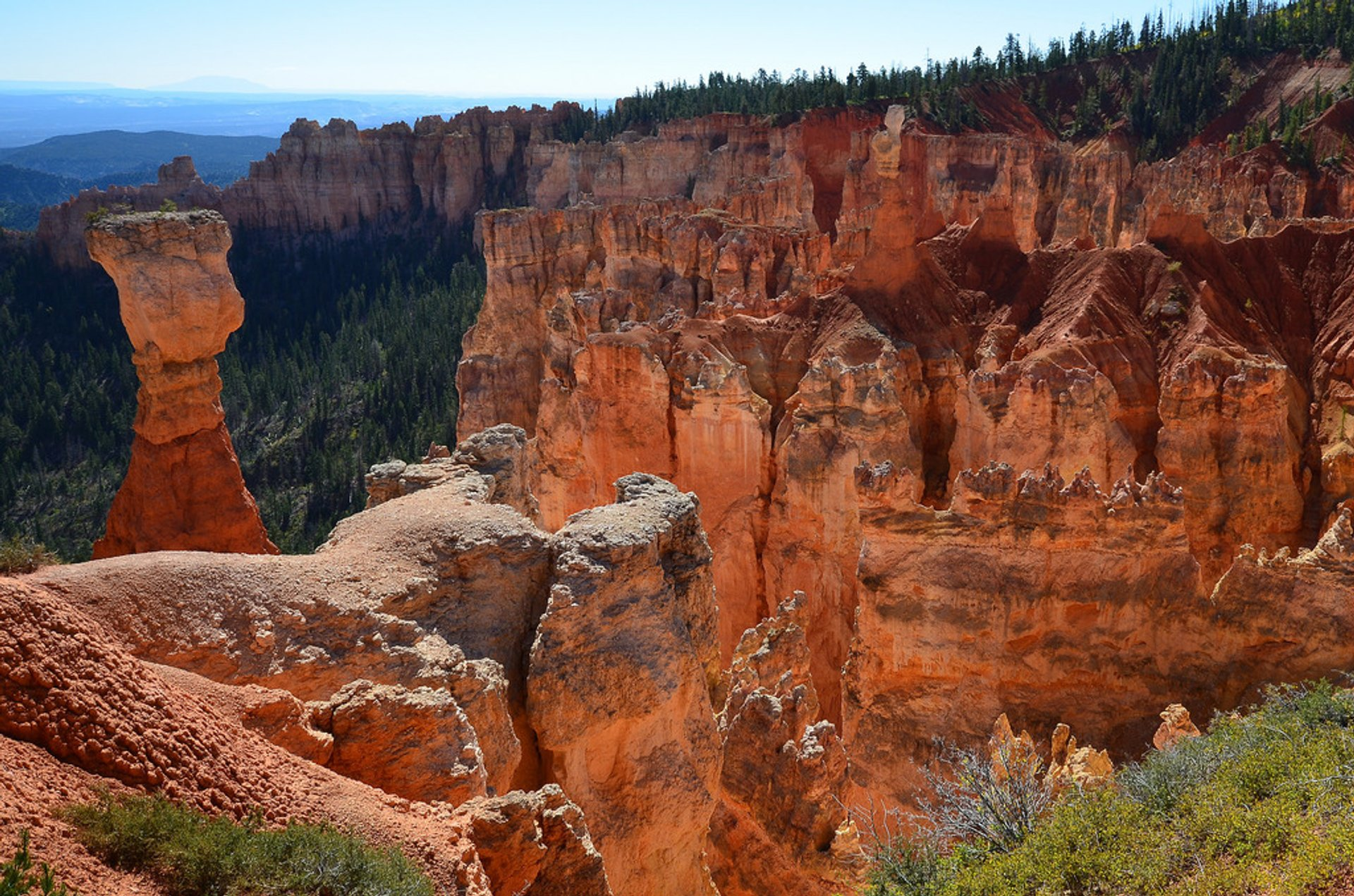 Best time for Dixie National Forest in Utah 2020