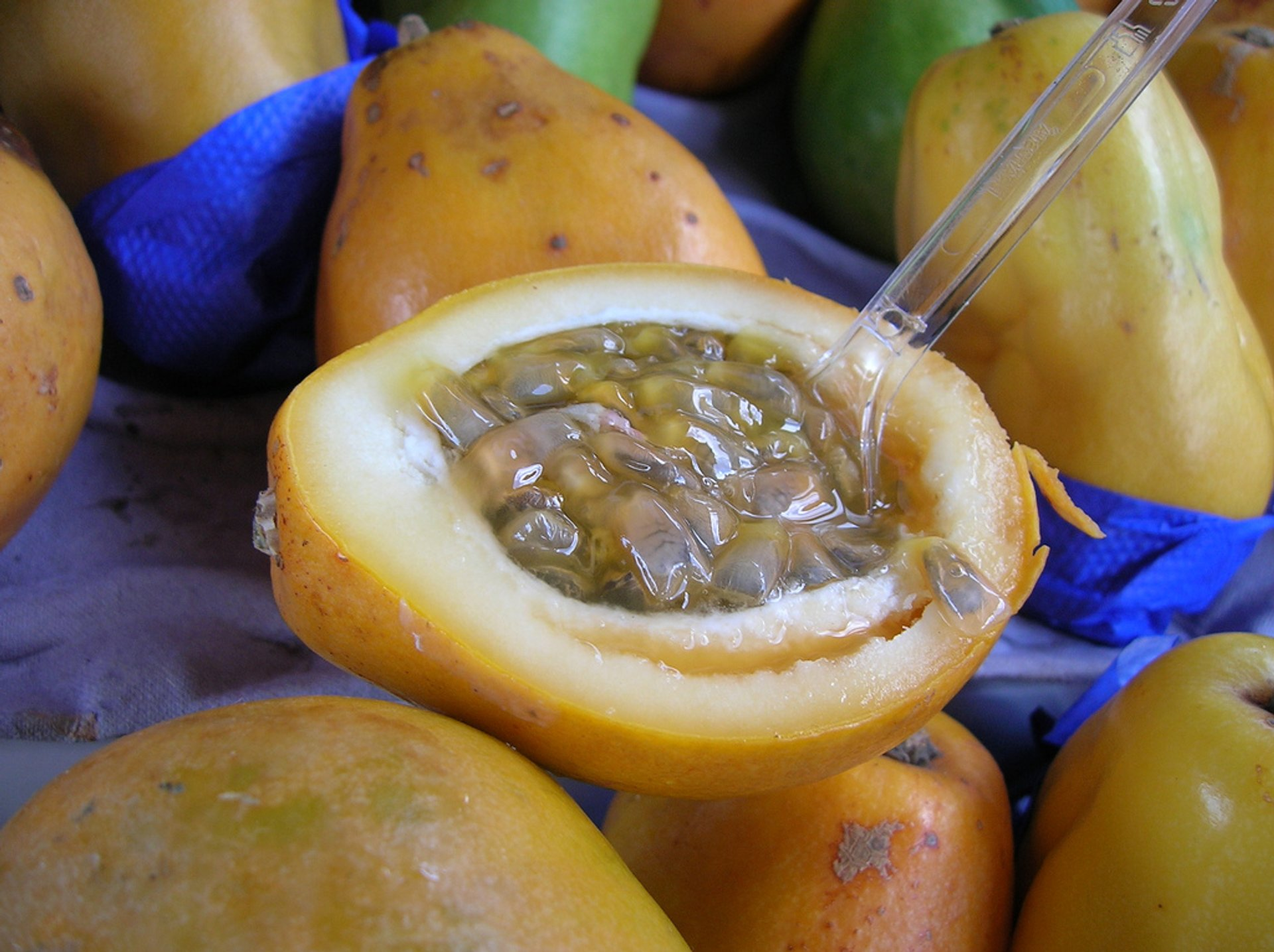 Passionfruit in New Zealand 2020 - Best Time