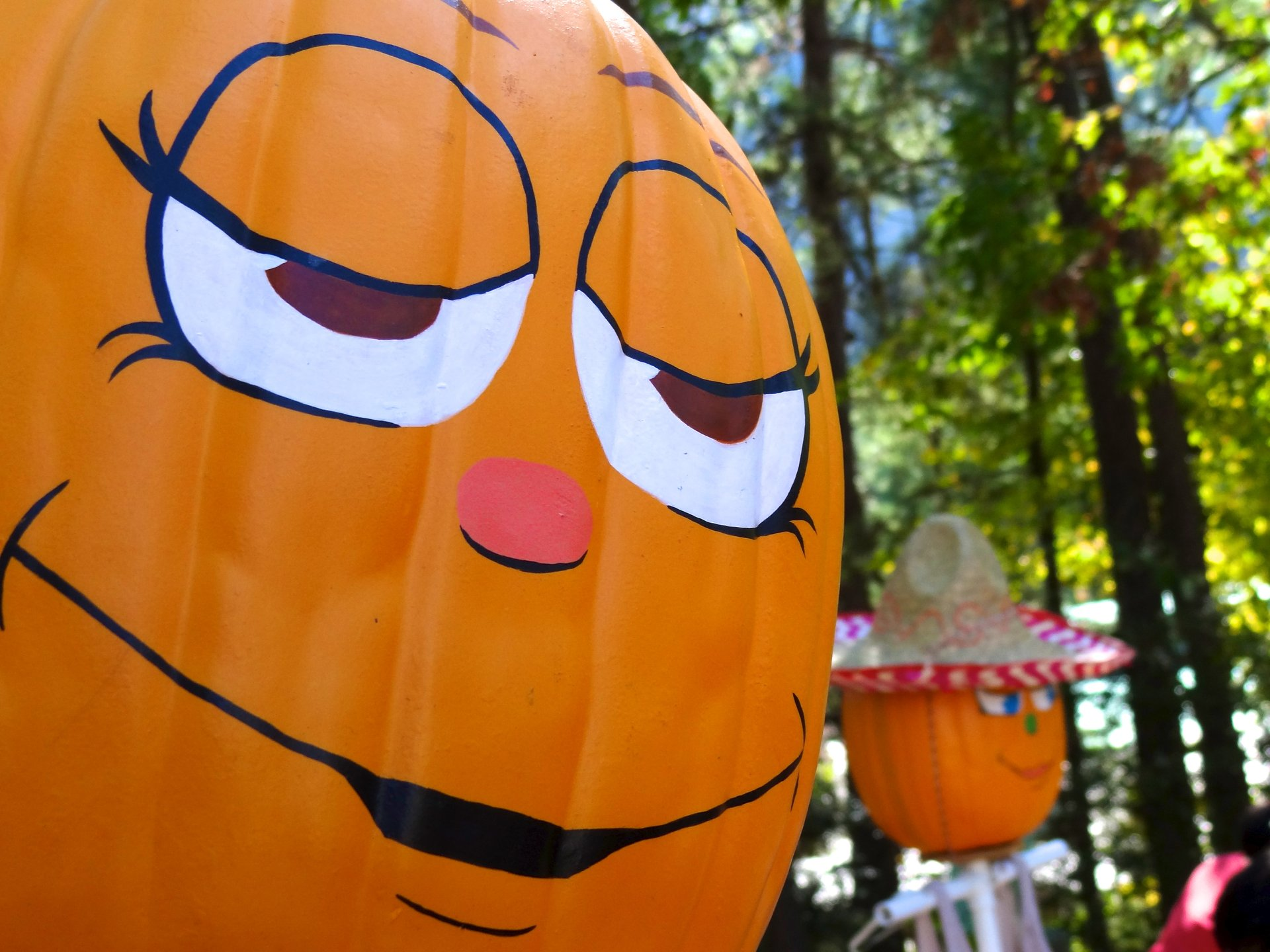 Pumpkin Festival at Stone Mountain Park 2020