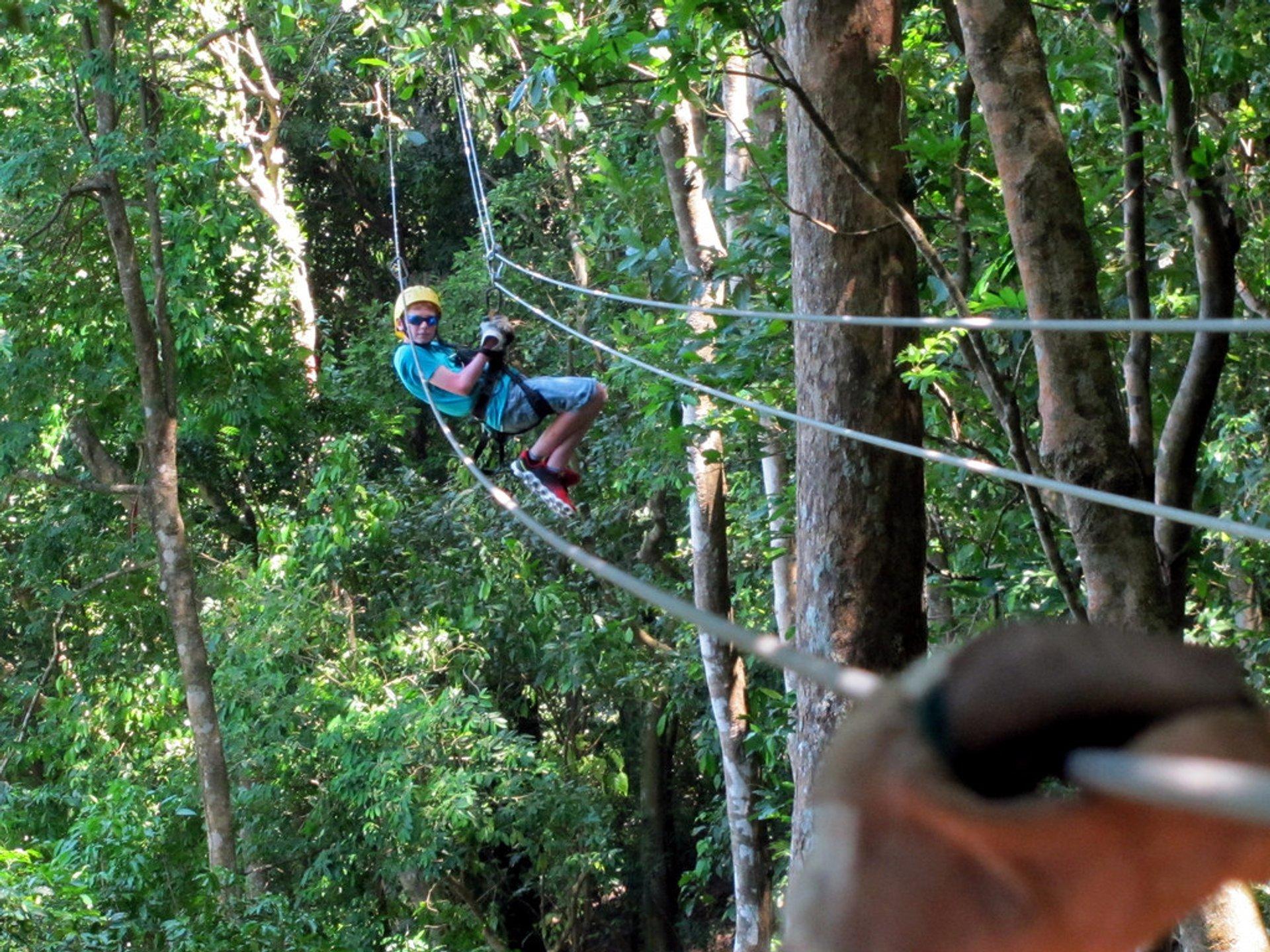 Ziplining on Roatán in Honduras 2020 - Best Time