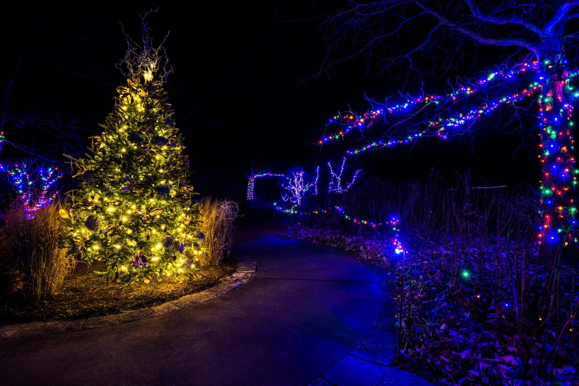 Best time to see Powell Gardens Festival of Lights in Midwest 2020