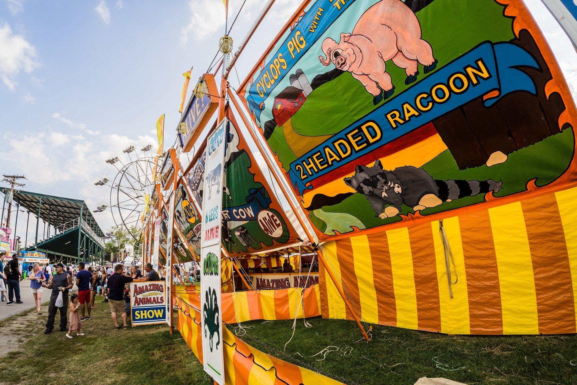Best time for Cuyahoga County Fair 2020
