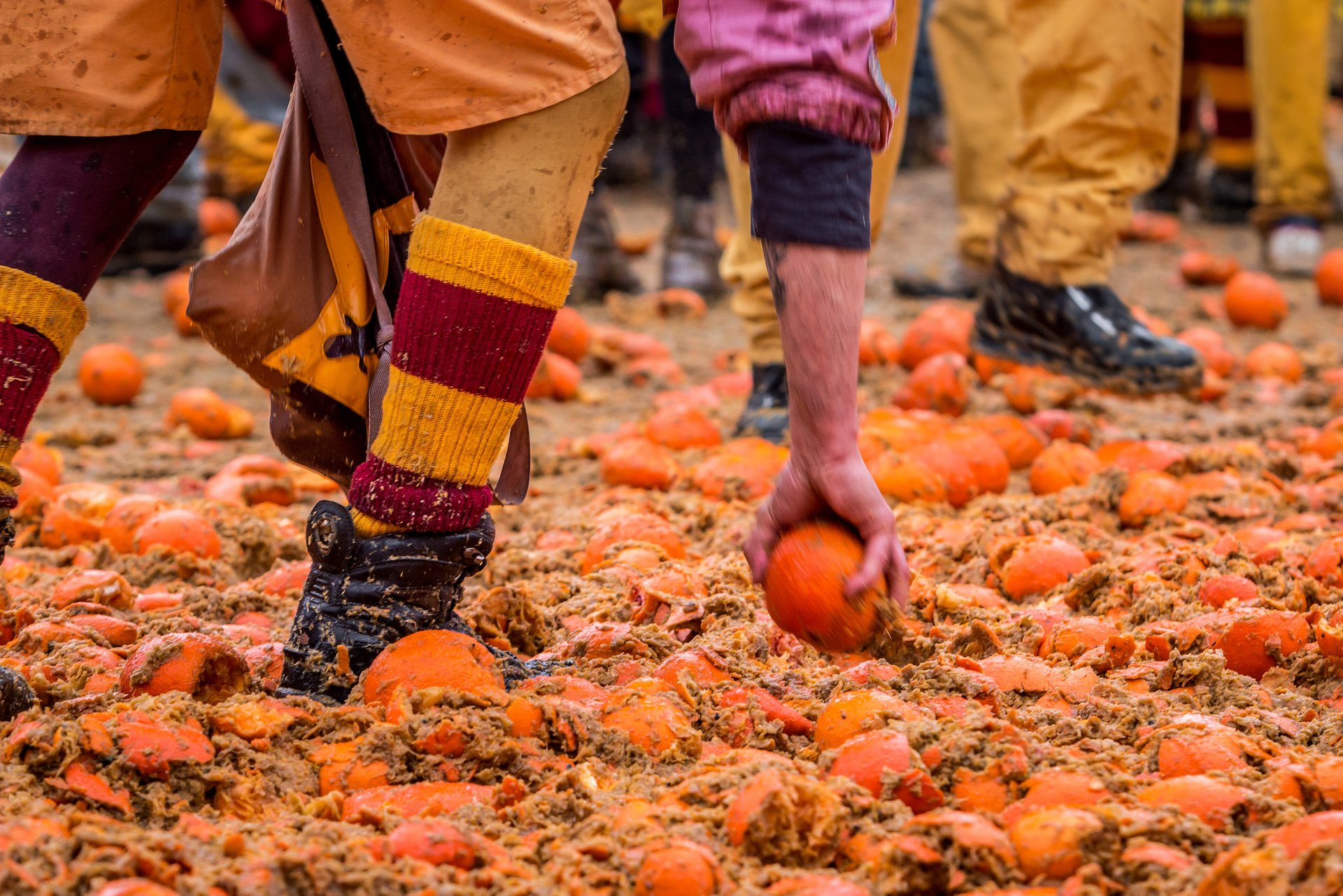 Best time to see Ivrea Battle of the Oranges in Italy 2020