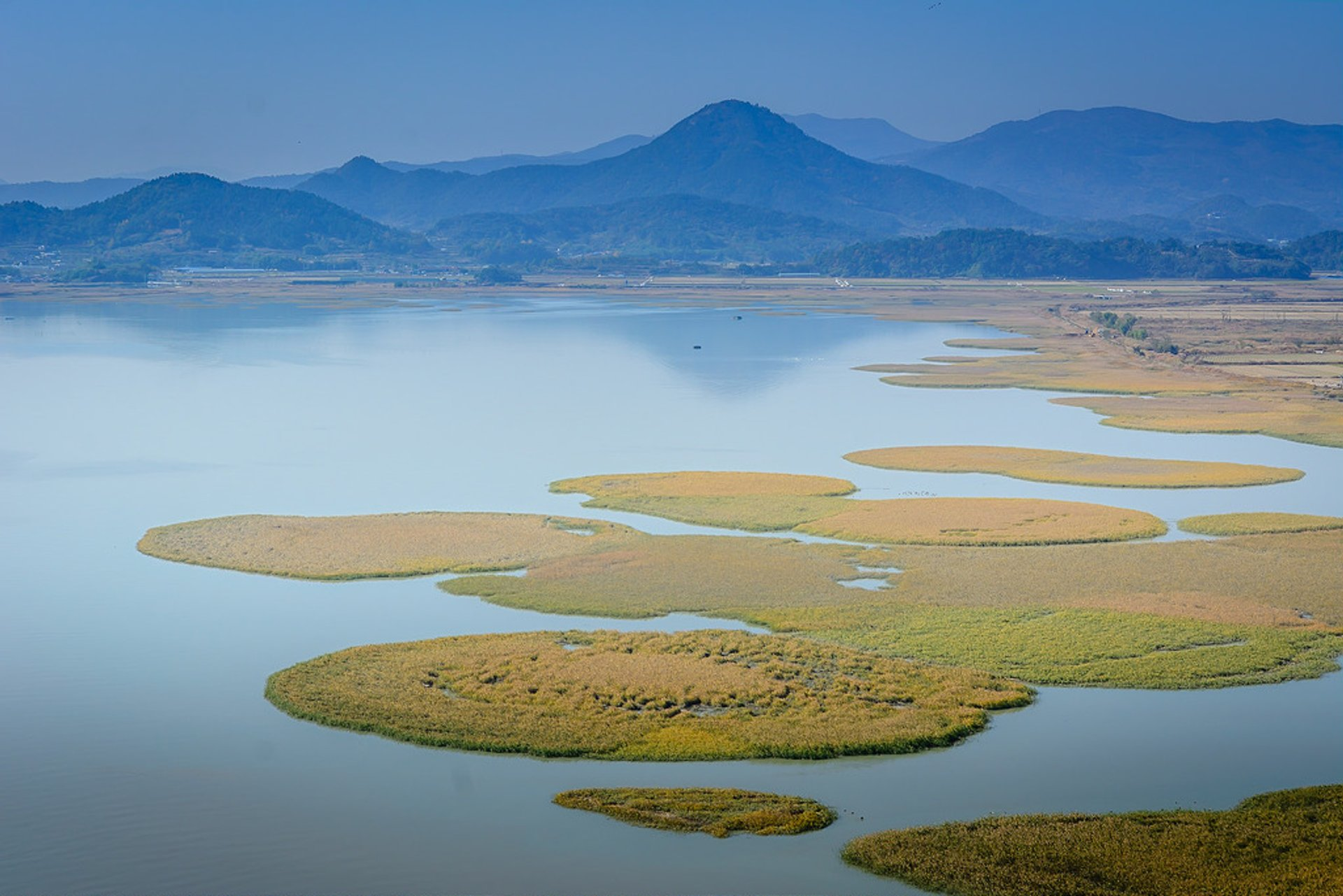 Suncheon Bay Wetland Reserve in South Korea 2020 - Best Time