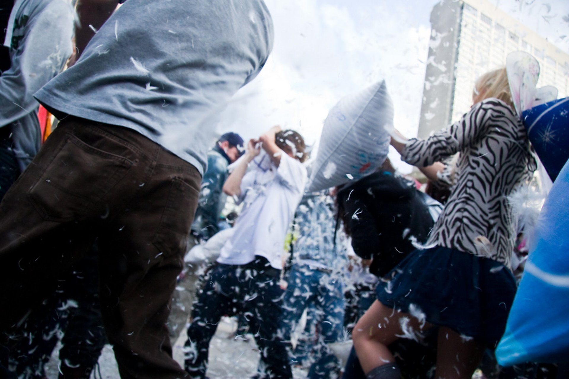 Giant Pillow Fight in Toronto - Best Time