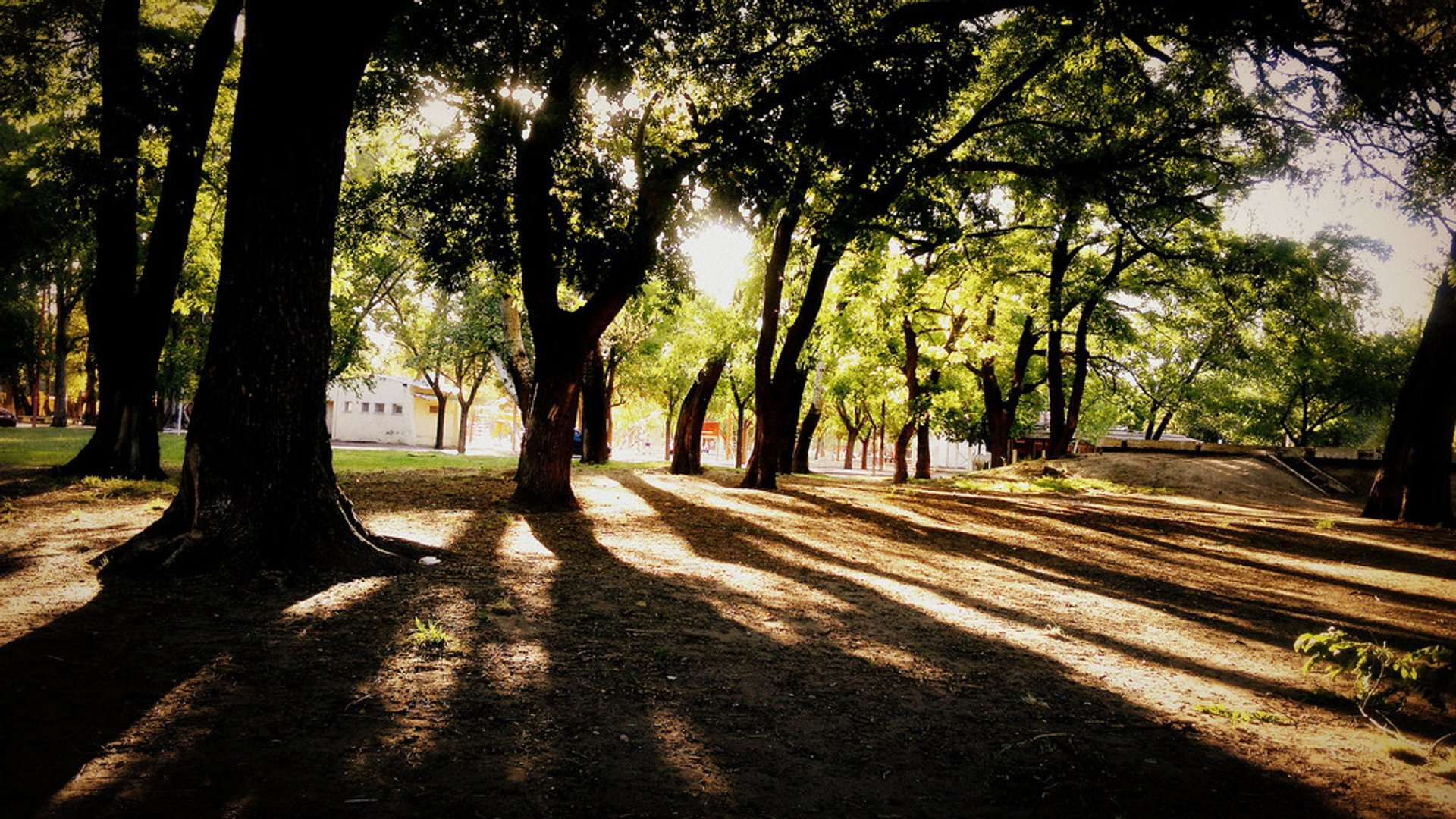 Parks in Summer in Buenos Aires - Best Season 2020