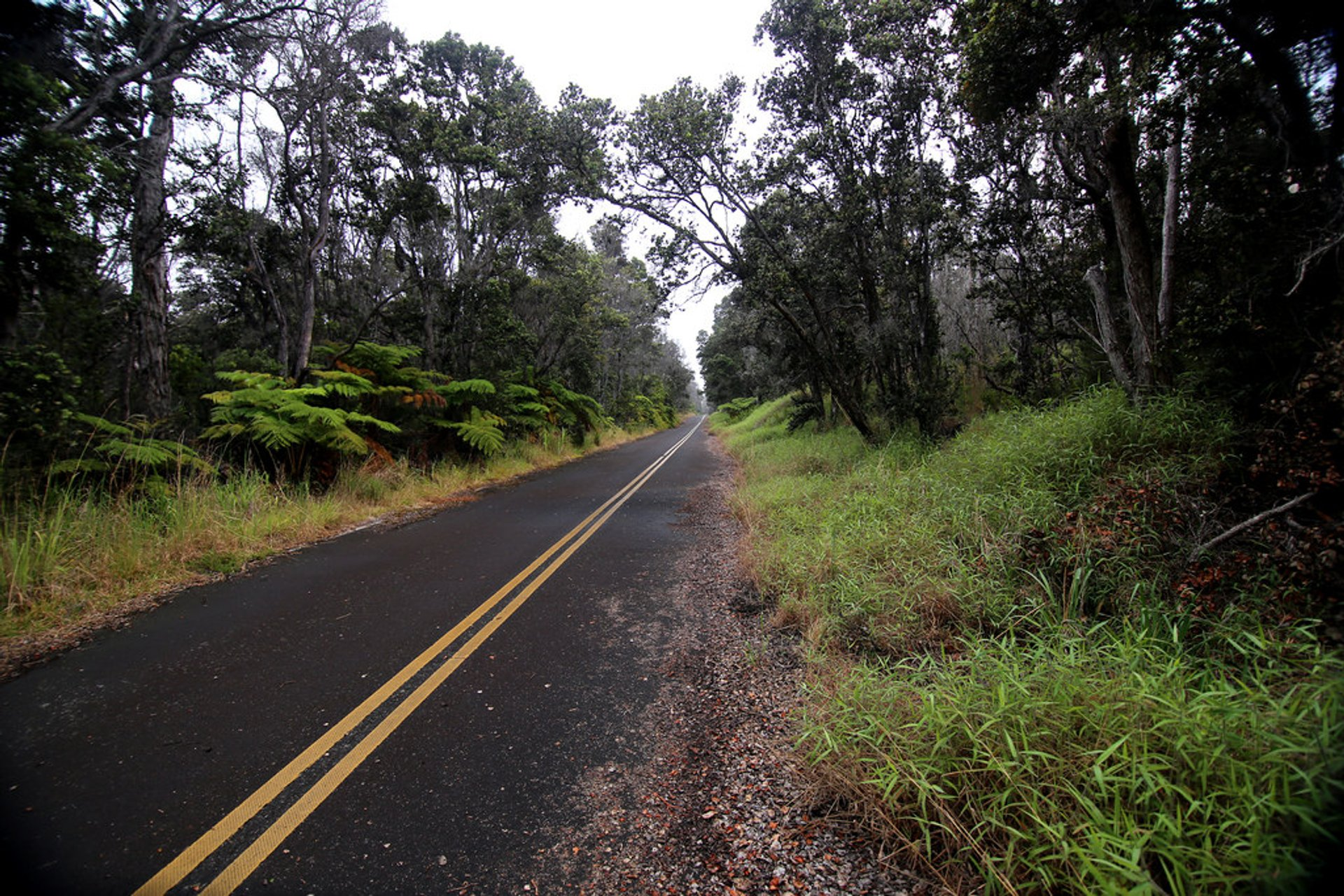 Crater Rim Drive in Hawaii - Best Time