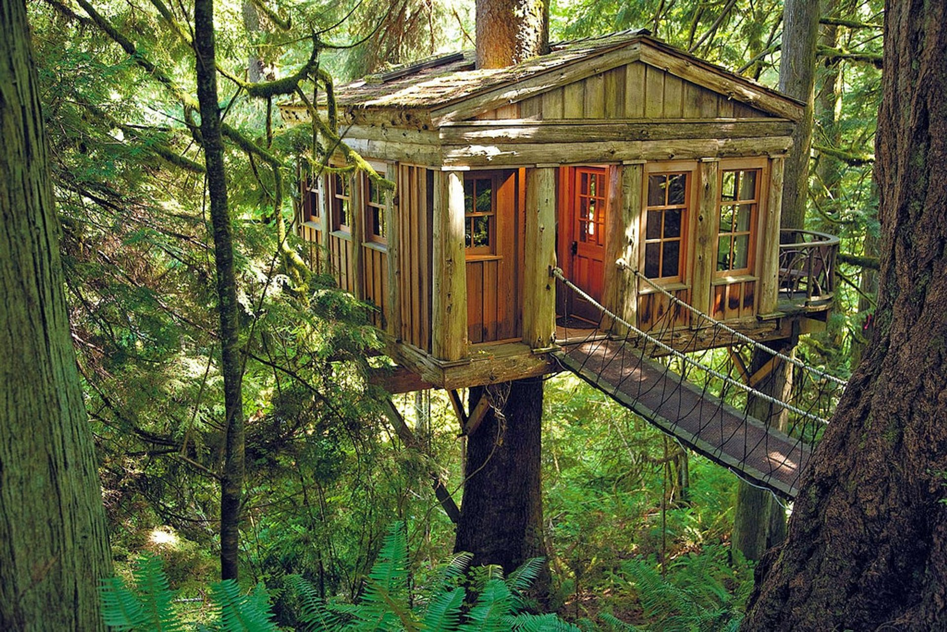 TreeHouse Point in Seattle 2020 - Best Time