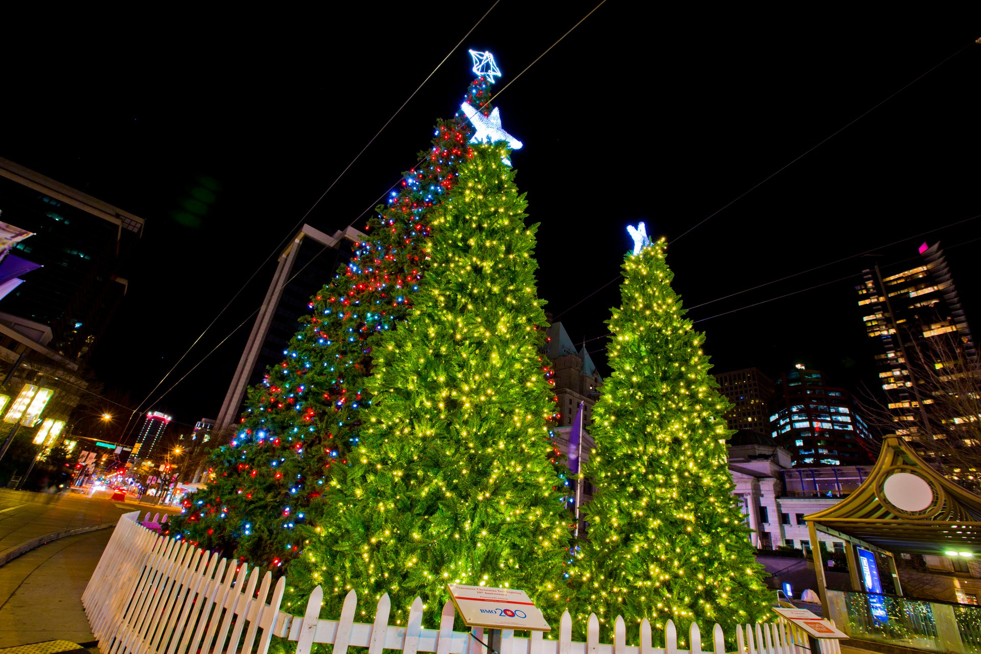 Christmas Tree at Robson Square 2020