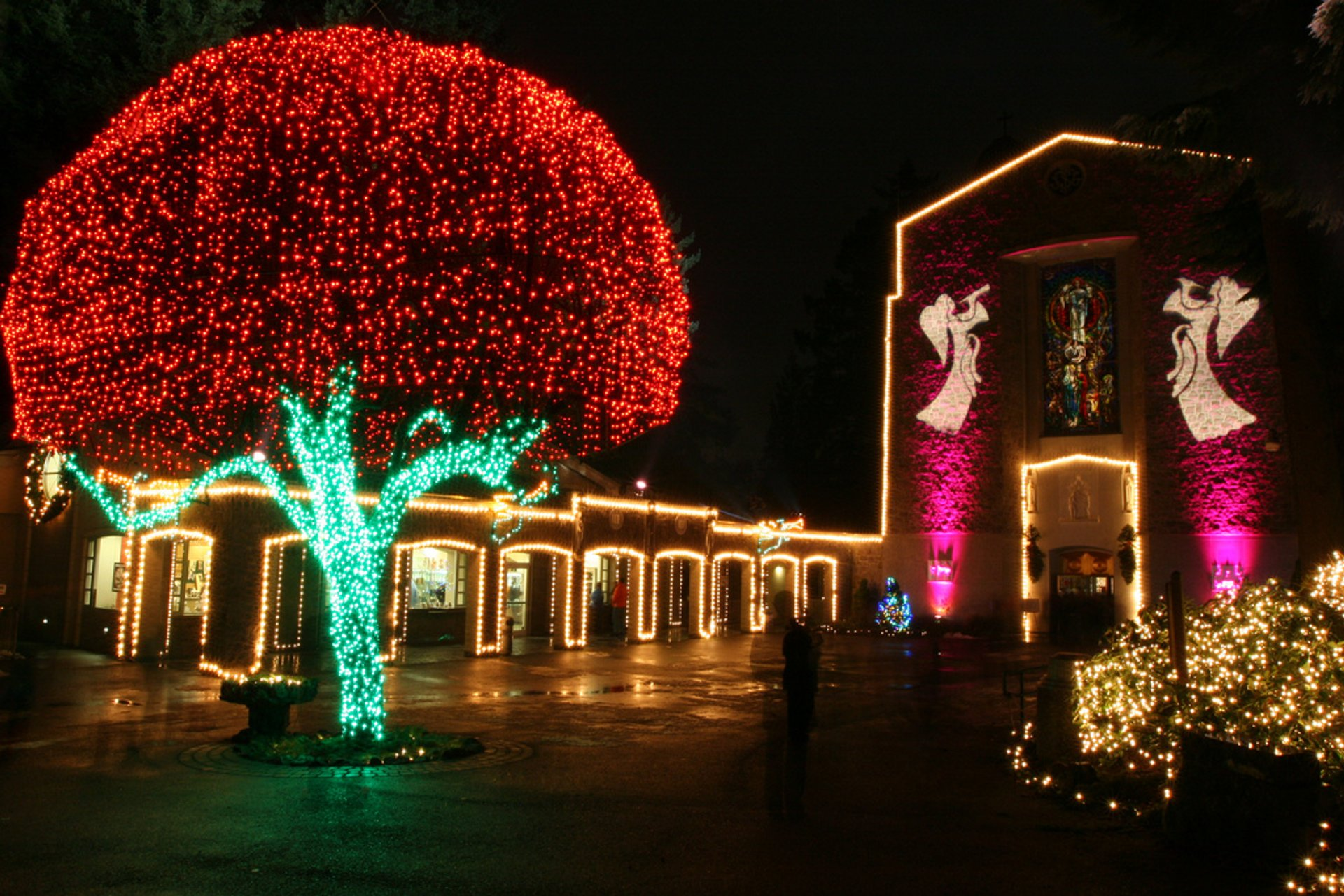 The Grotto's Christmas Festival of Lights in Portland 2019 - Best Time