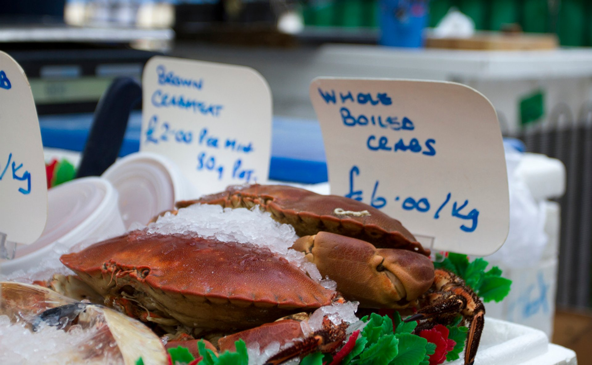Langoustines, Crabs and Lobsters in Edinburgh 2020 - Best Time