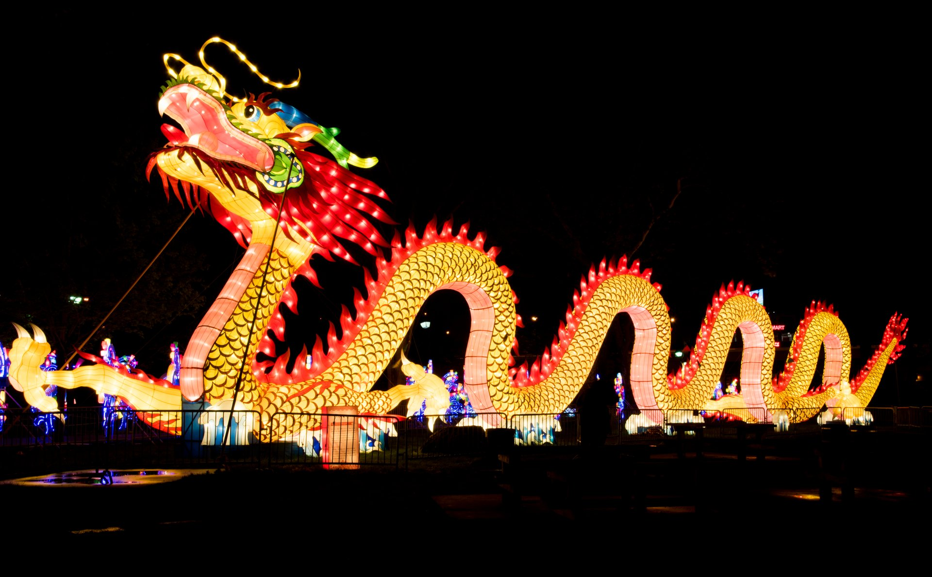 Dragon at Philadelphia Chinese Lantern Festival, Franklin Square 2020