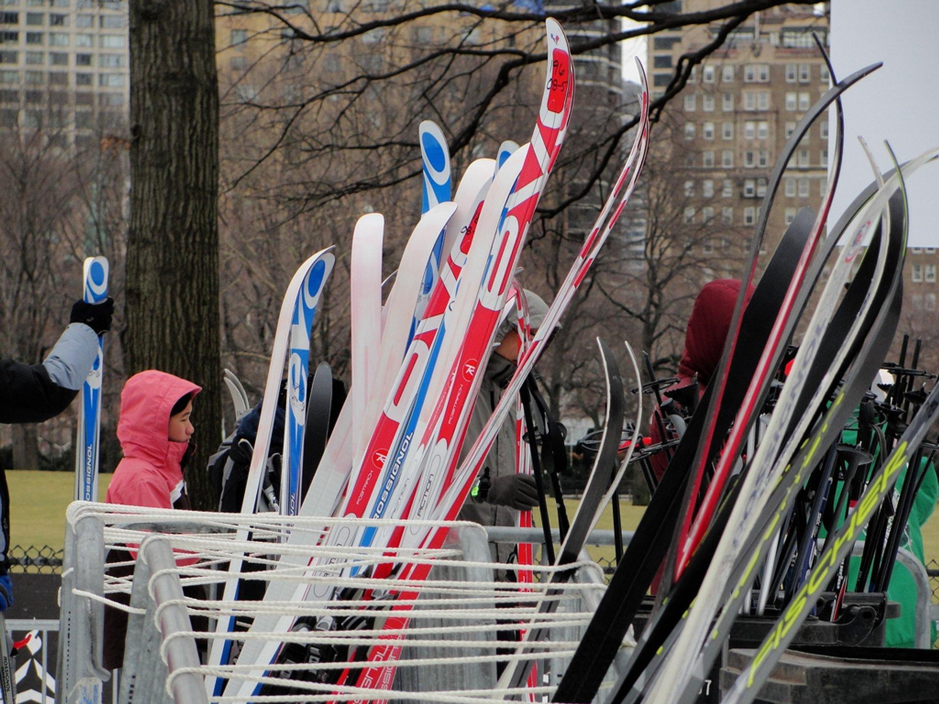 Ski rack 2020