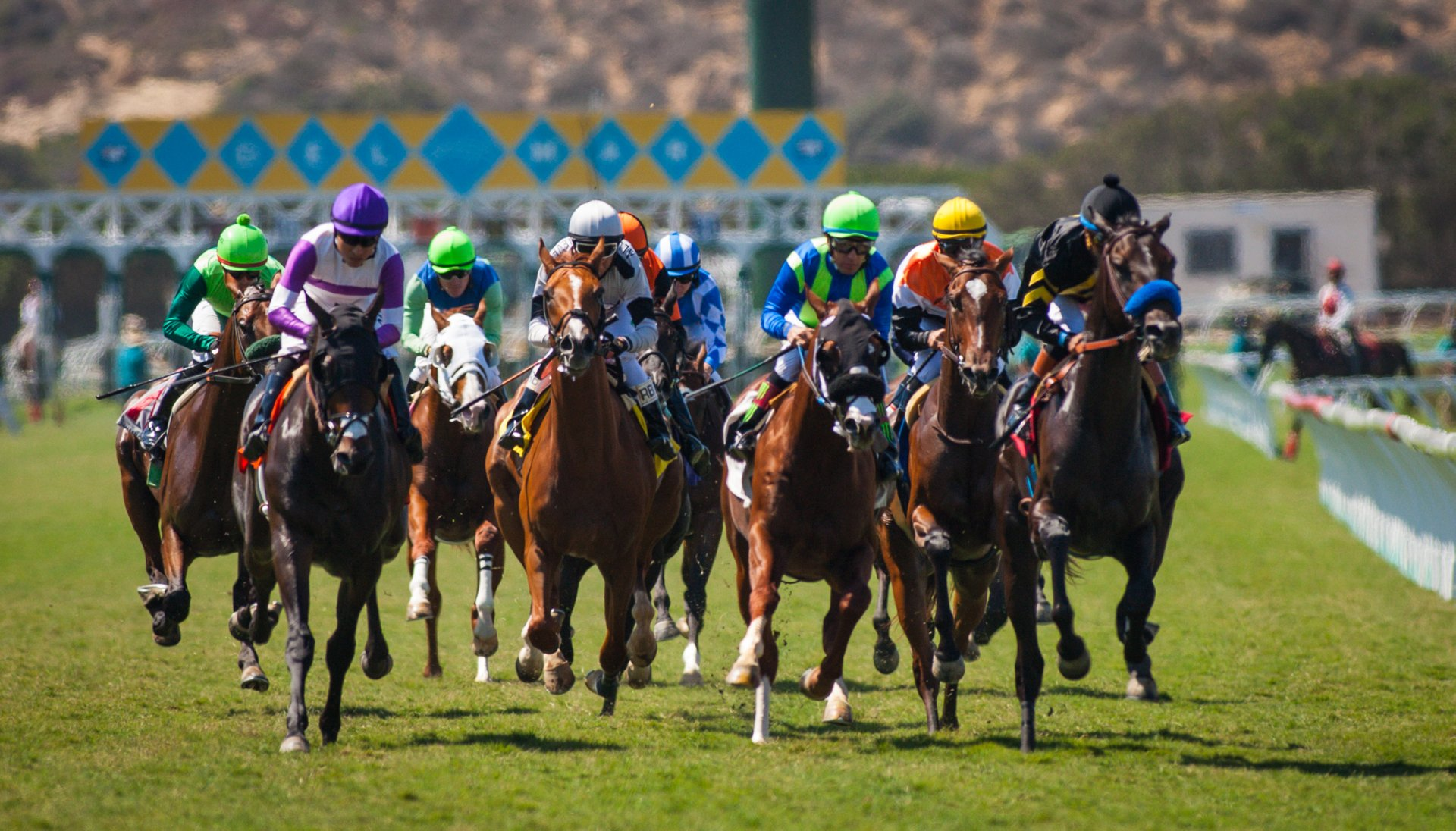Del Mar Racing Season in San Diego 2020 - Best Time
