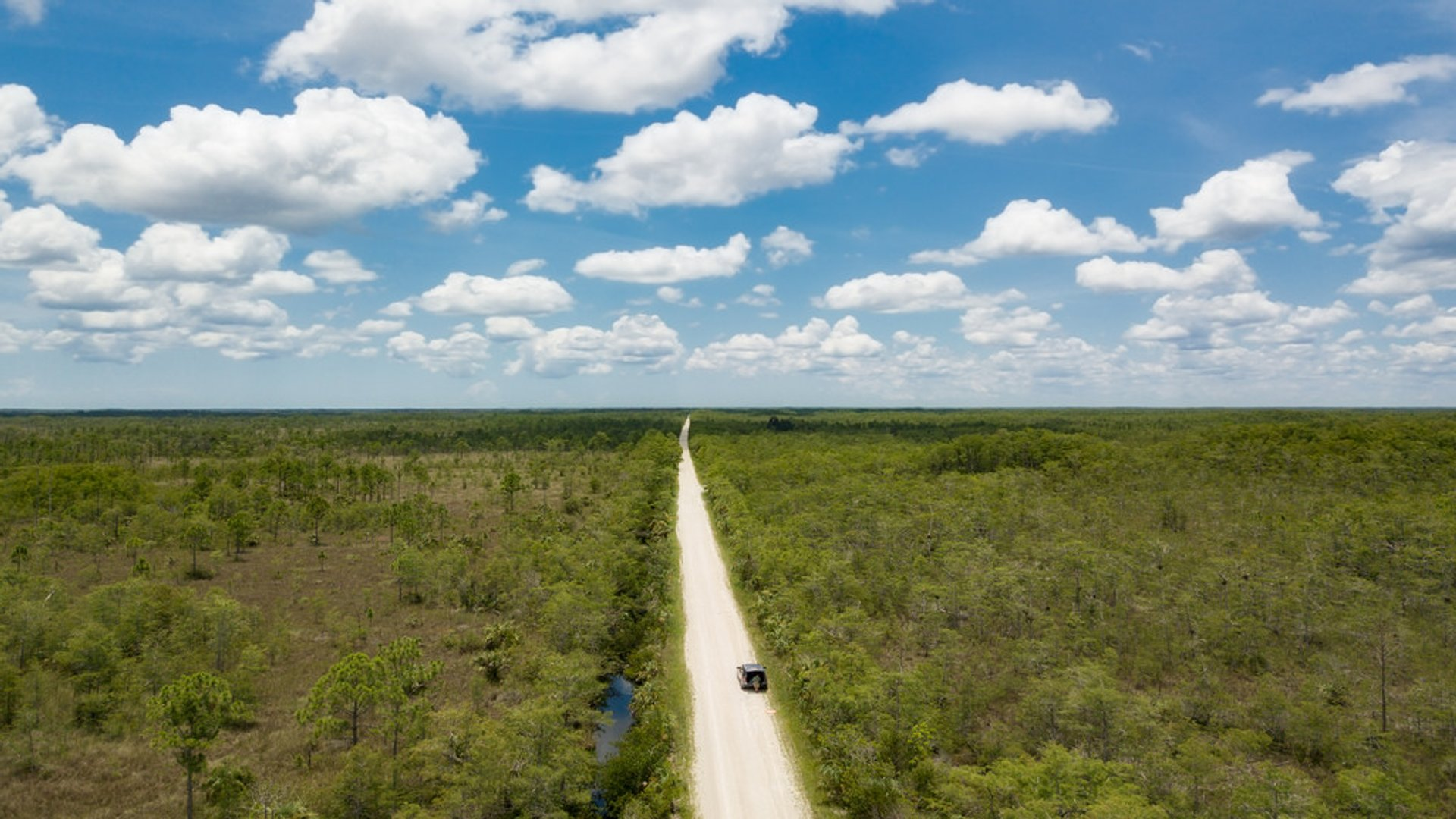Loop Road Scenic Drive in Florida - Best Season 2020