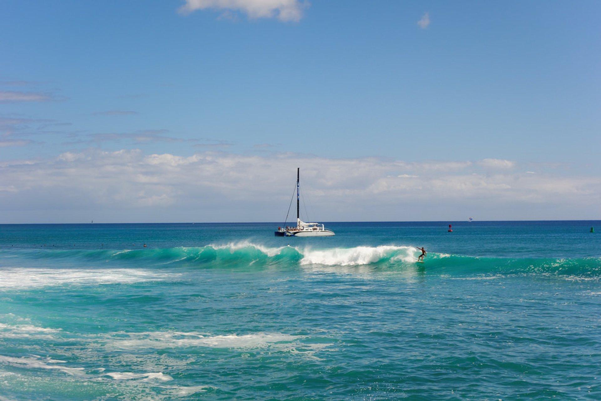 Sailing and Cruising in Hawaii - Best Season 2020