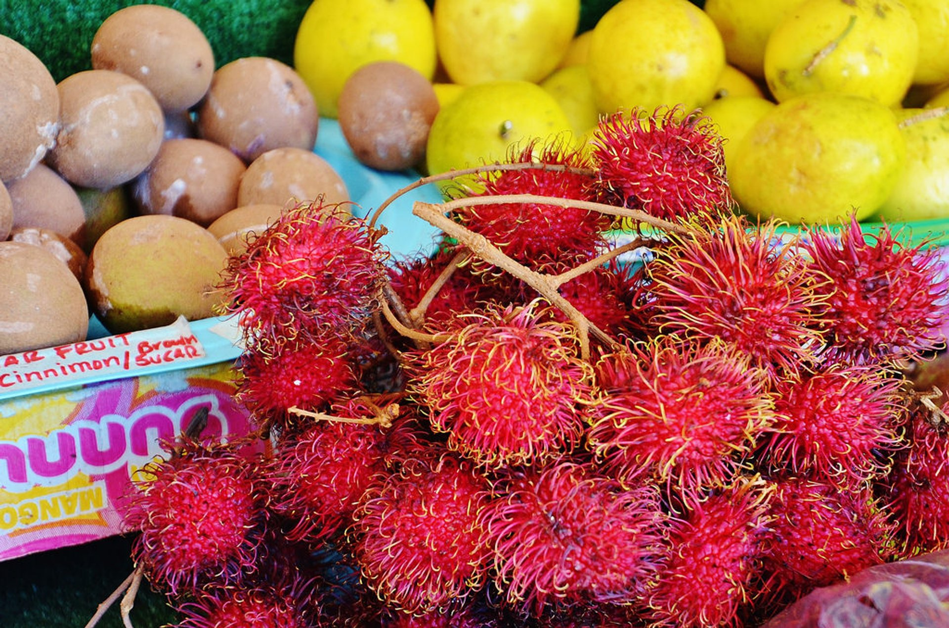 Rambutan in Hawaii - Best Time