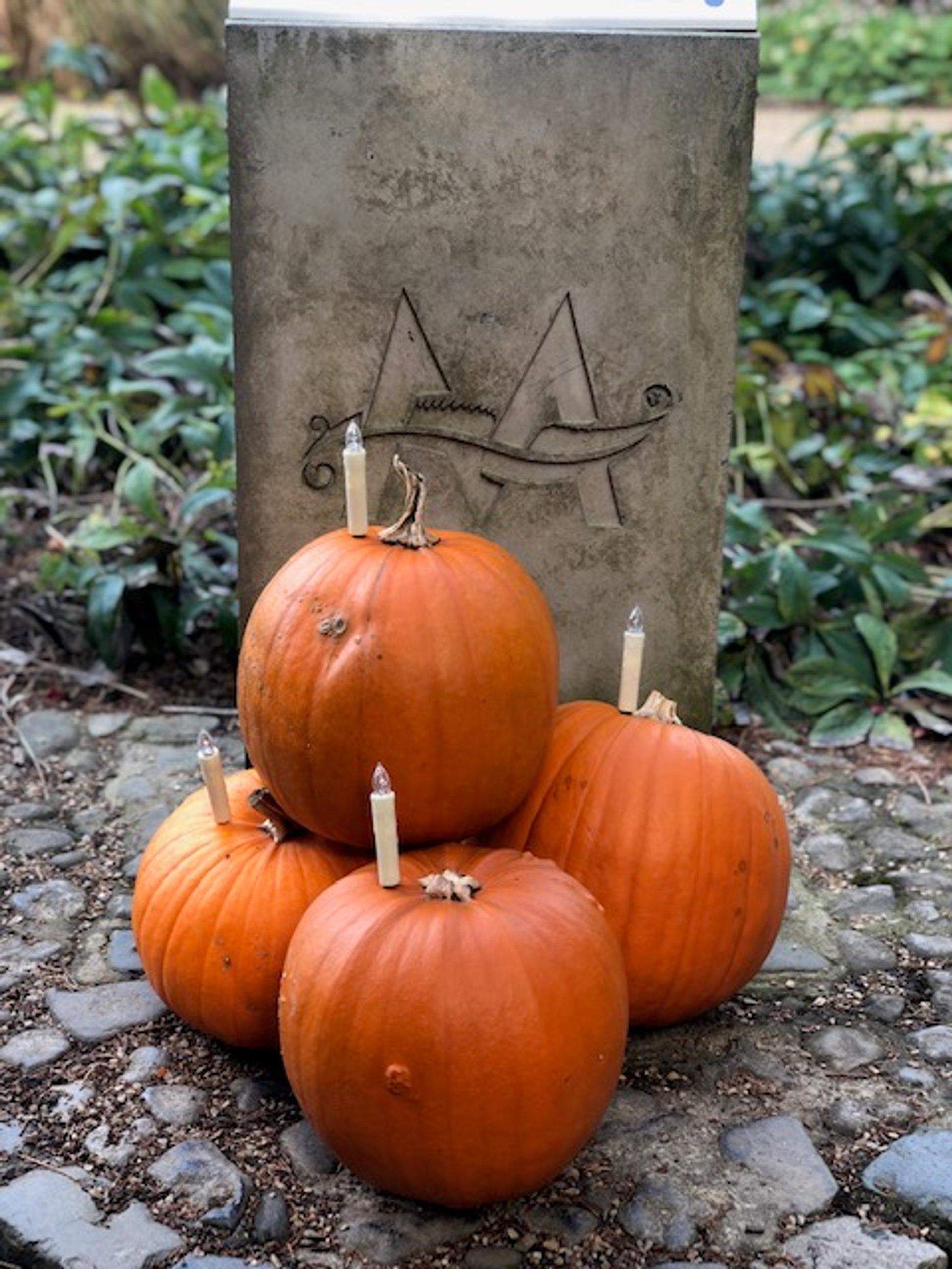 Halloween at Malahide Castle 2020