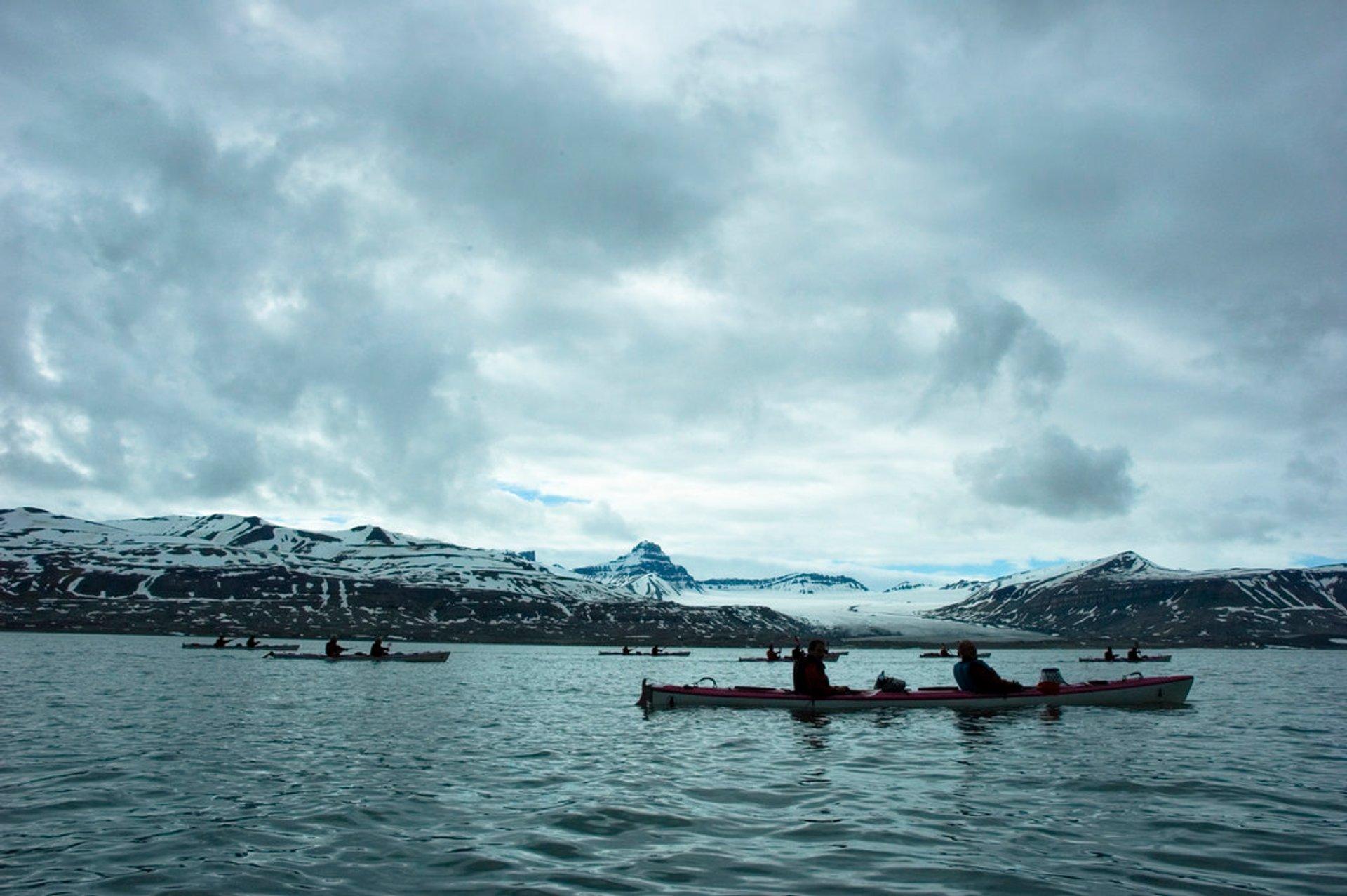 Kayaking around Ekmanfjord 2020