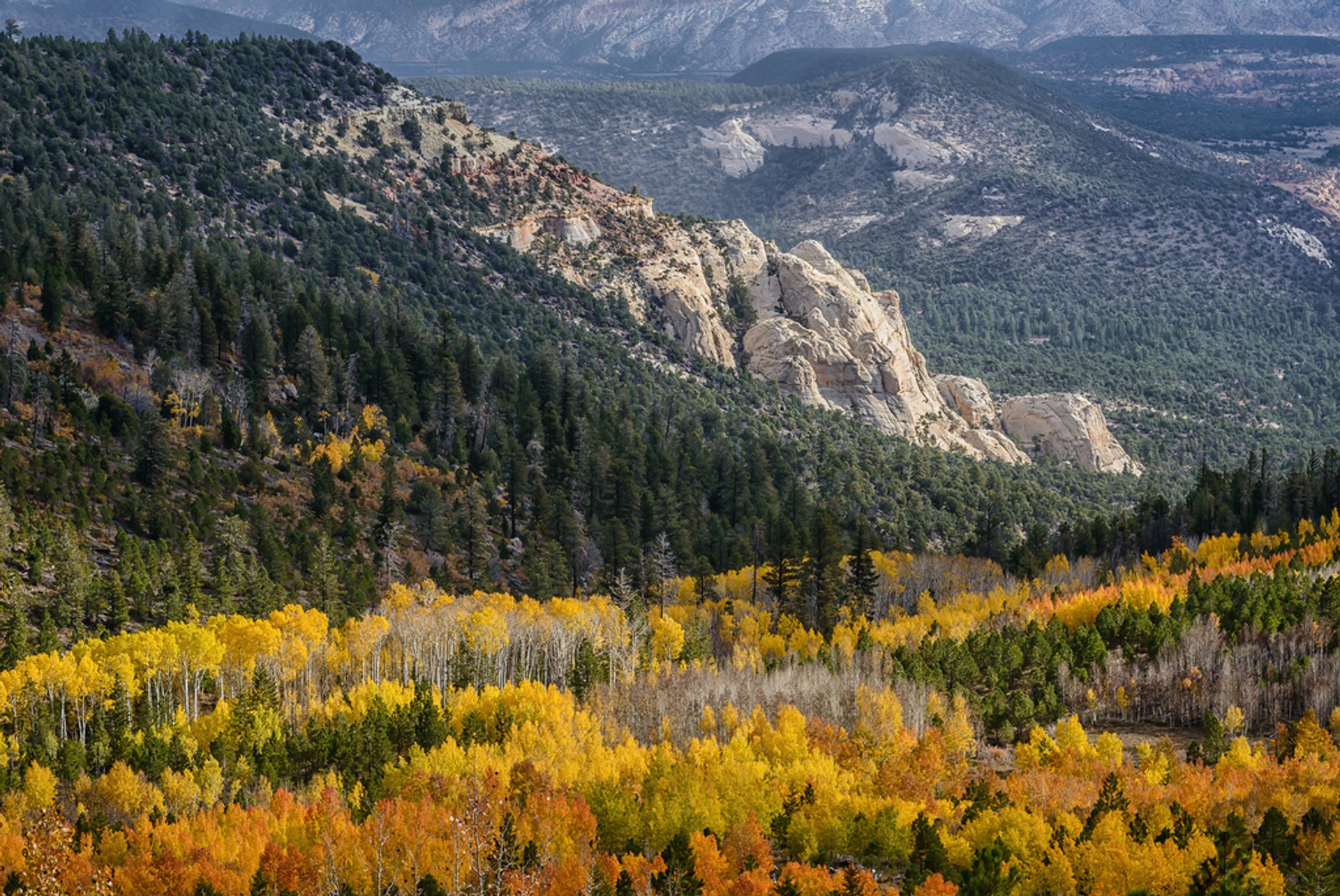 Dixie National Forest in Utah 2020 - Best Time