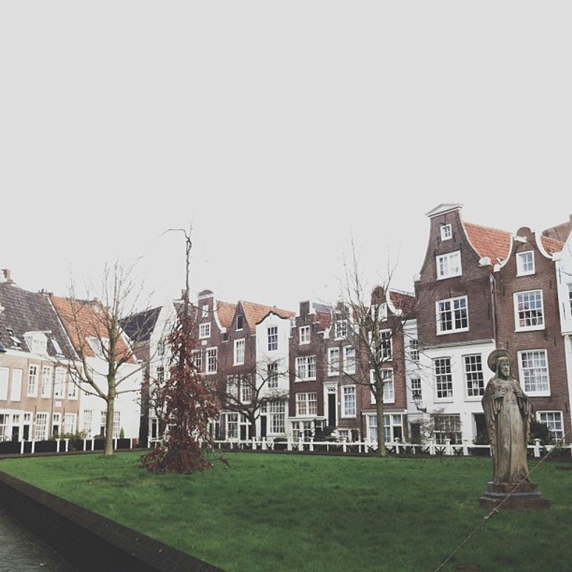 Open Garden Days of Amsterdam in The Netherlands - Best Season 2020