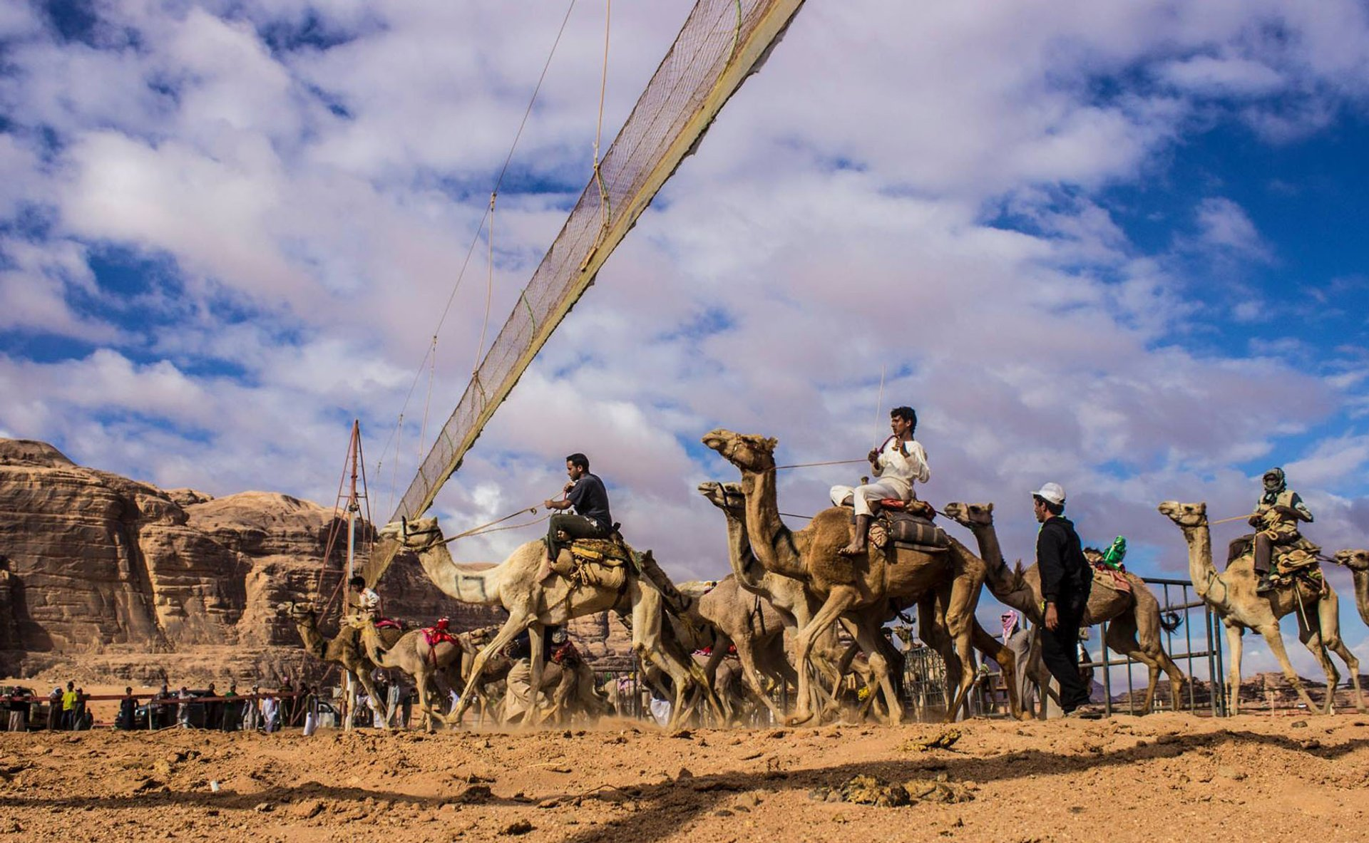 Camel Races in Jordan - Best Season 2019
