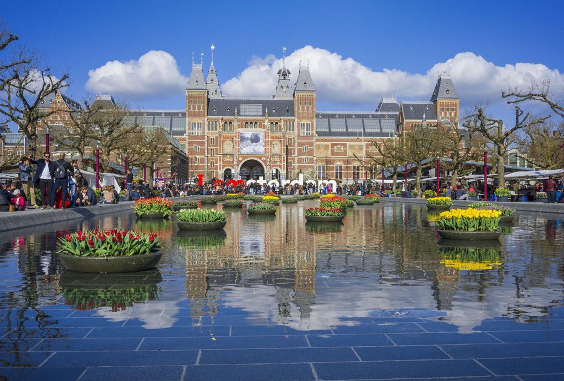 Best time for Tulp Festival (Amsterdam Tulip Festival) in Amsterdam 2020