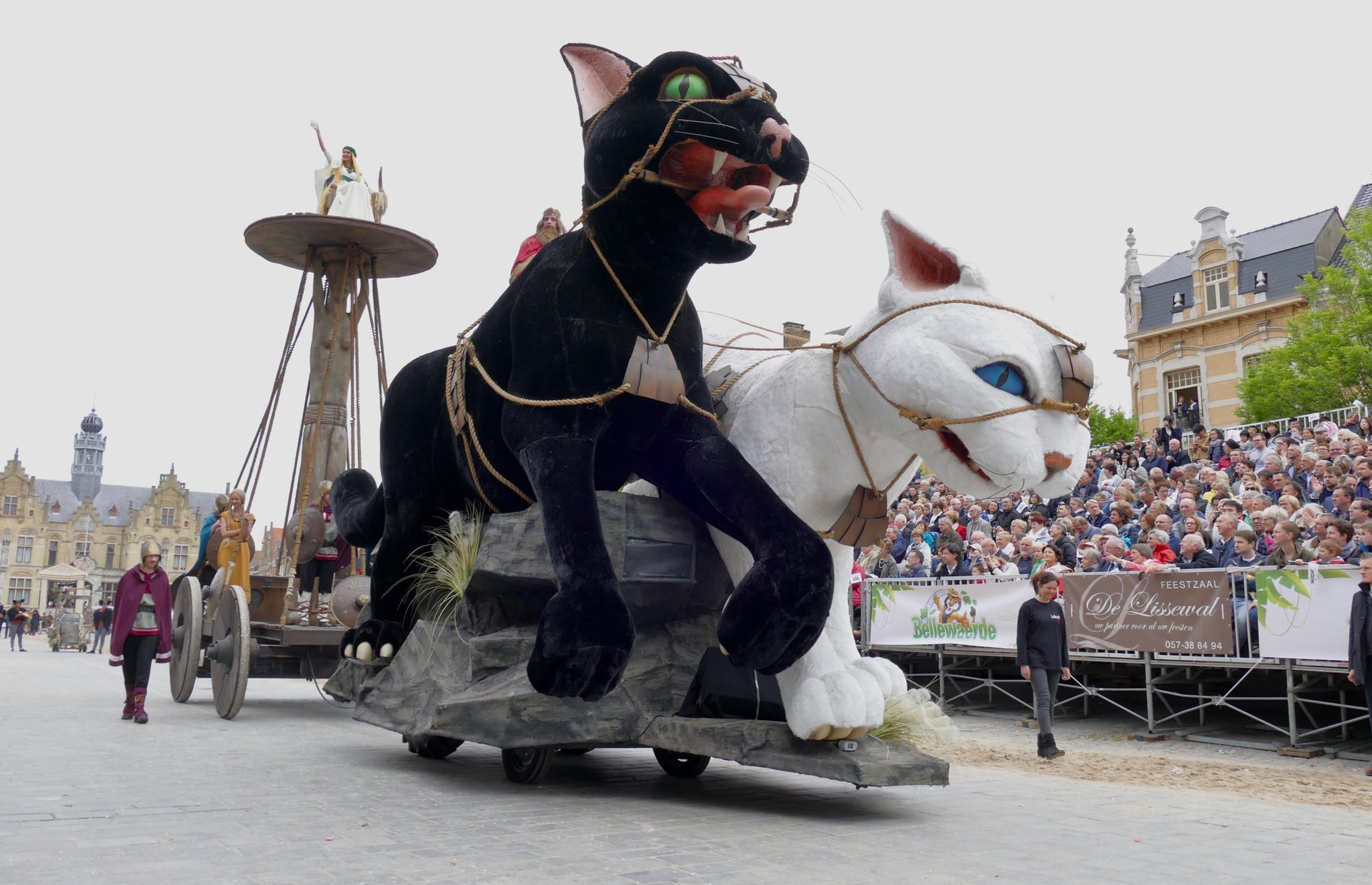 Kattenstoet in Belgium 2020 - Best Time