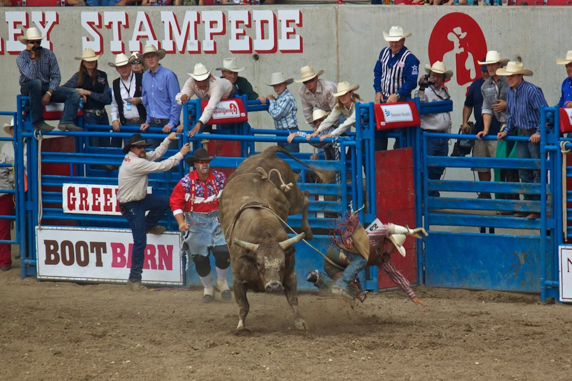 Greeley Stampede in Colorado 2020 - Best Time