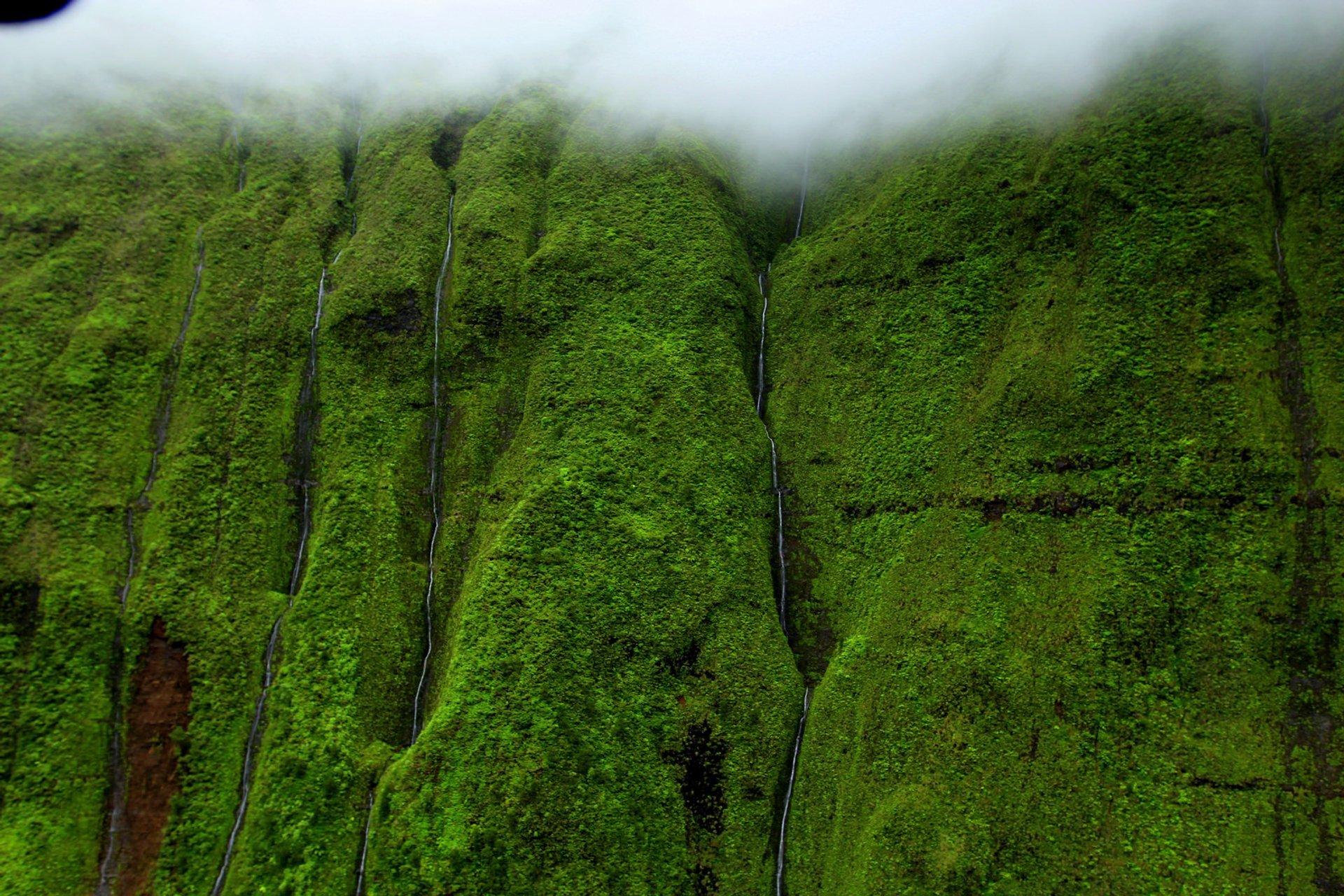 Weeping Wall or Blue Hole in Hawaii - Best Season 2020